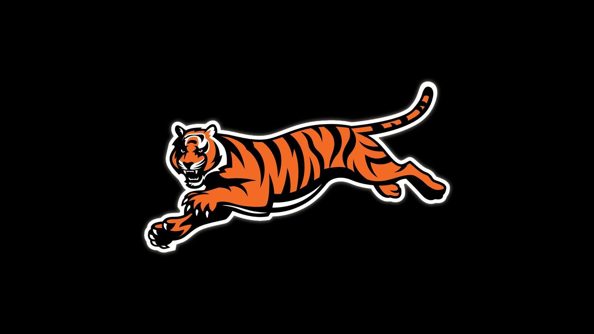 Cincinnati Bengals Background