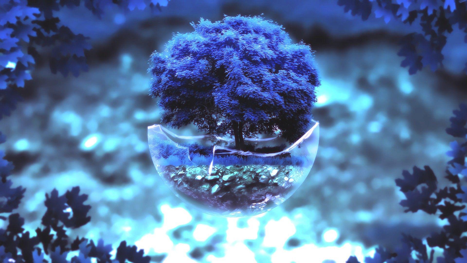 Different Bonsai Tree Blue Tree Desktop Wallpaper, Pictures, Photos