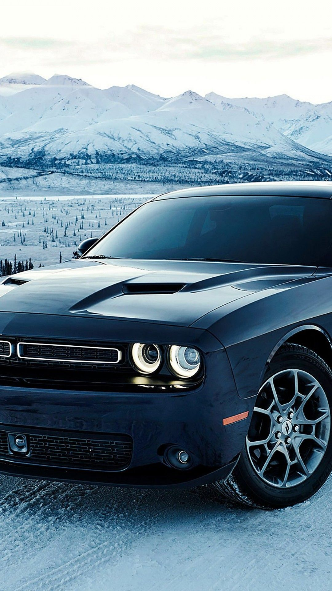 Dodge Challenger Car Hd Wallpaper For Desktop And Mobiles Iphone S P