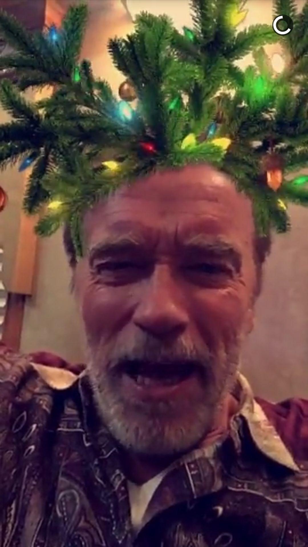 Download Free Arnold Schwarzenegger Iphone Wallpaper
