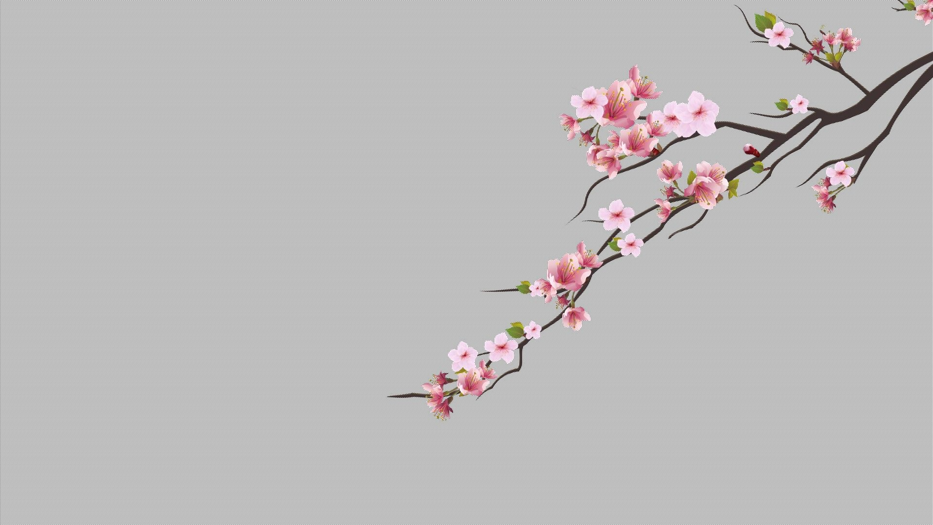 Download Hd Wallpapers Of Cherry Trees, Cherry Blossom, Minimalism,