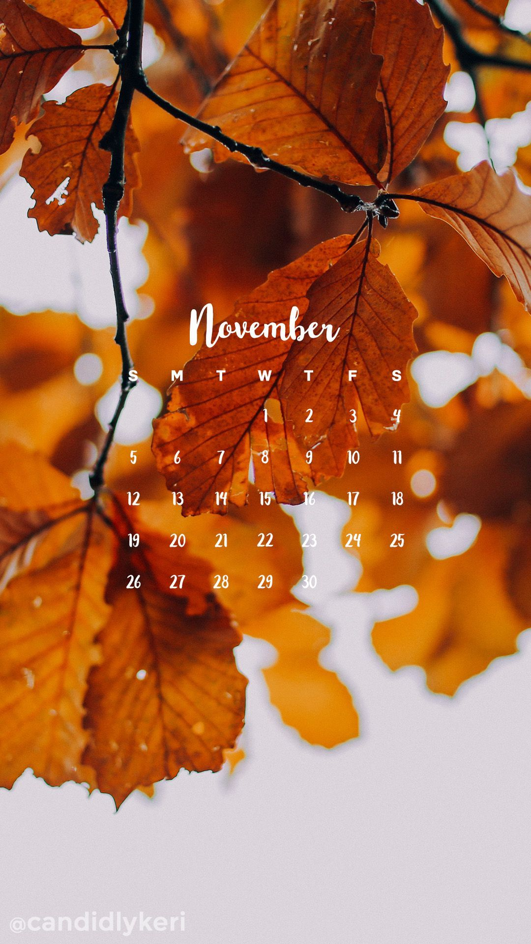 Golden Changing Fall Leaves November Calendar Wallpaper You Can Downlo