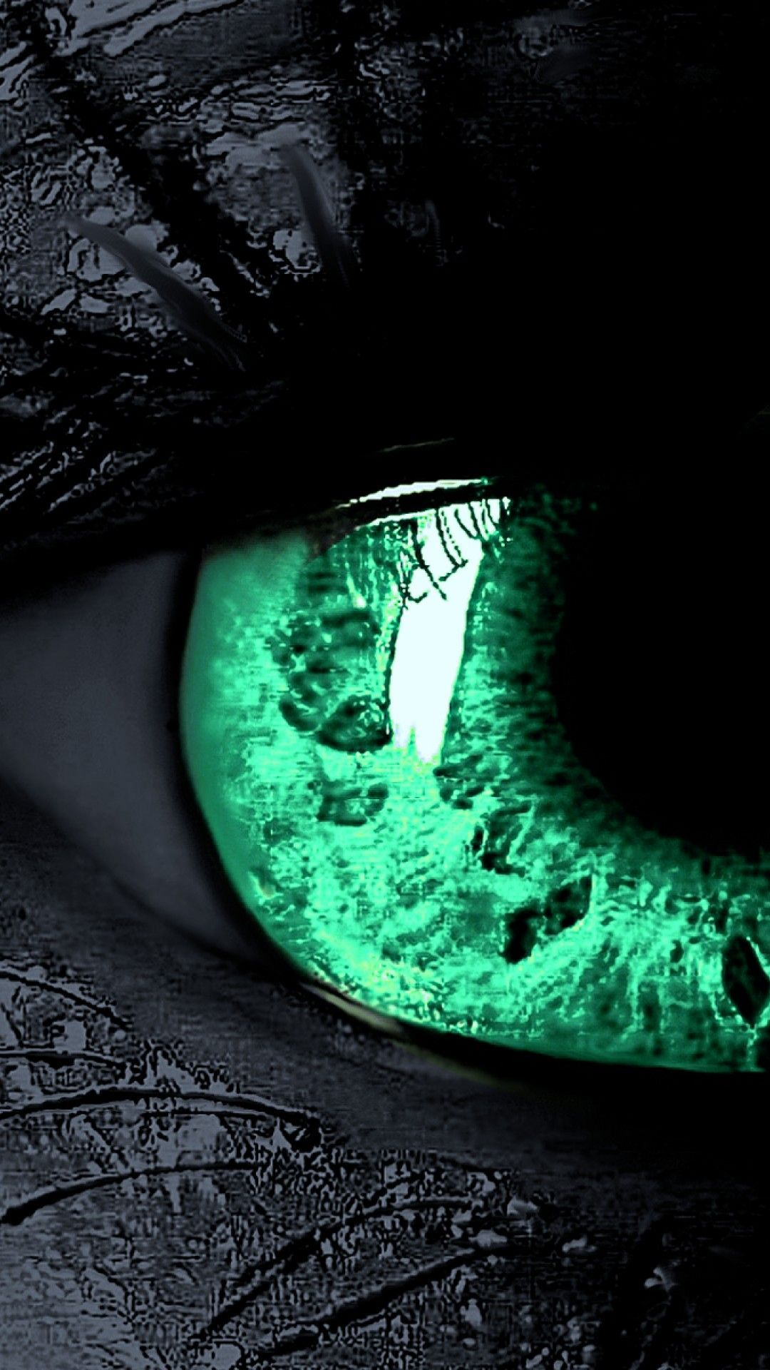 Green Eyes Beautiful Hd Wallpaper For Desktop And Mobiles Iphone