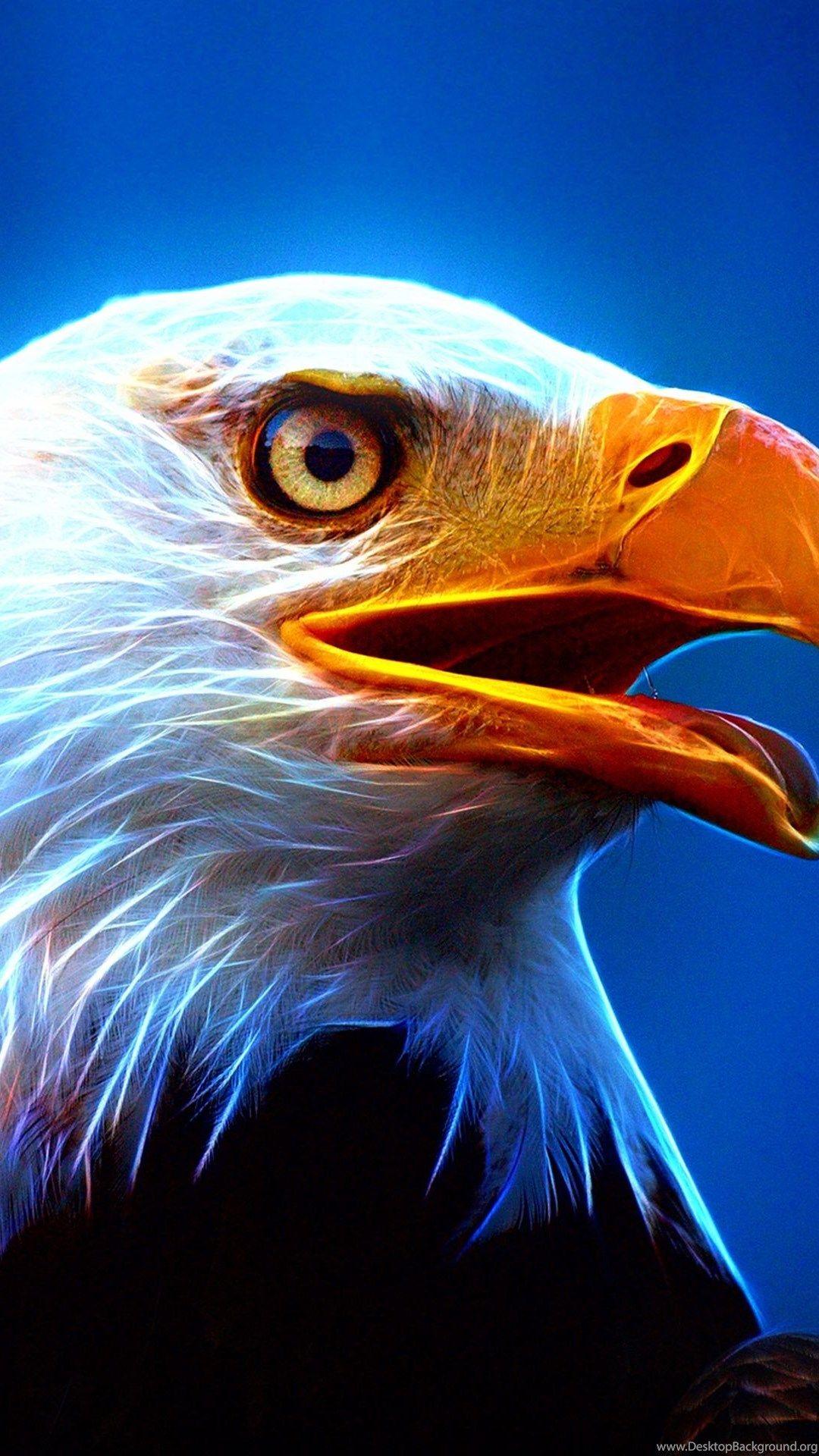 Hd Eagle Wallpapers Desktop Background