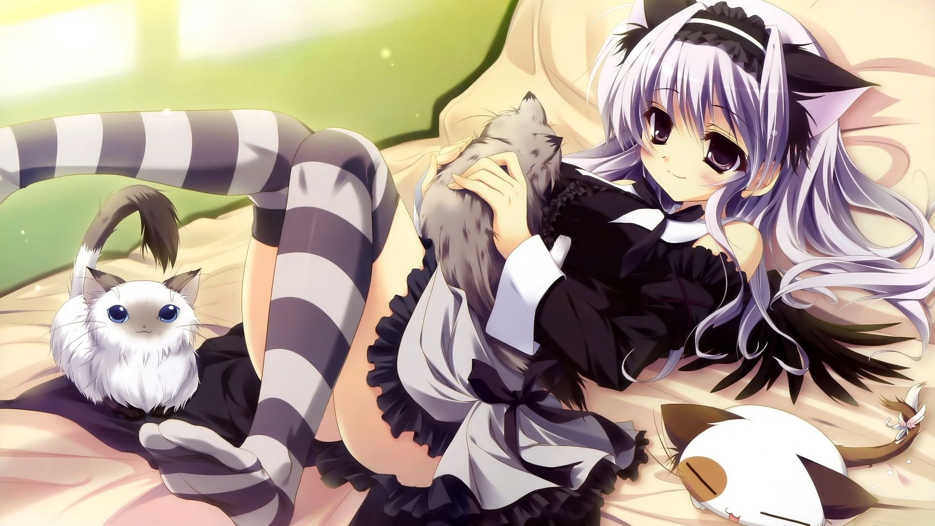 Image Icfgw In Tlkennet Anime Hd Wallpapers Album