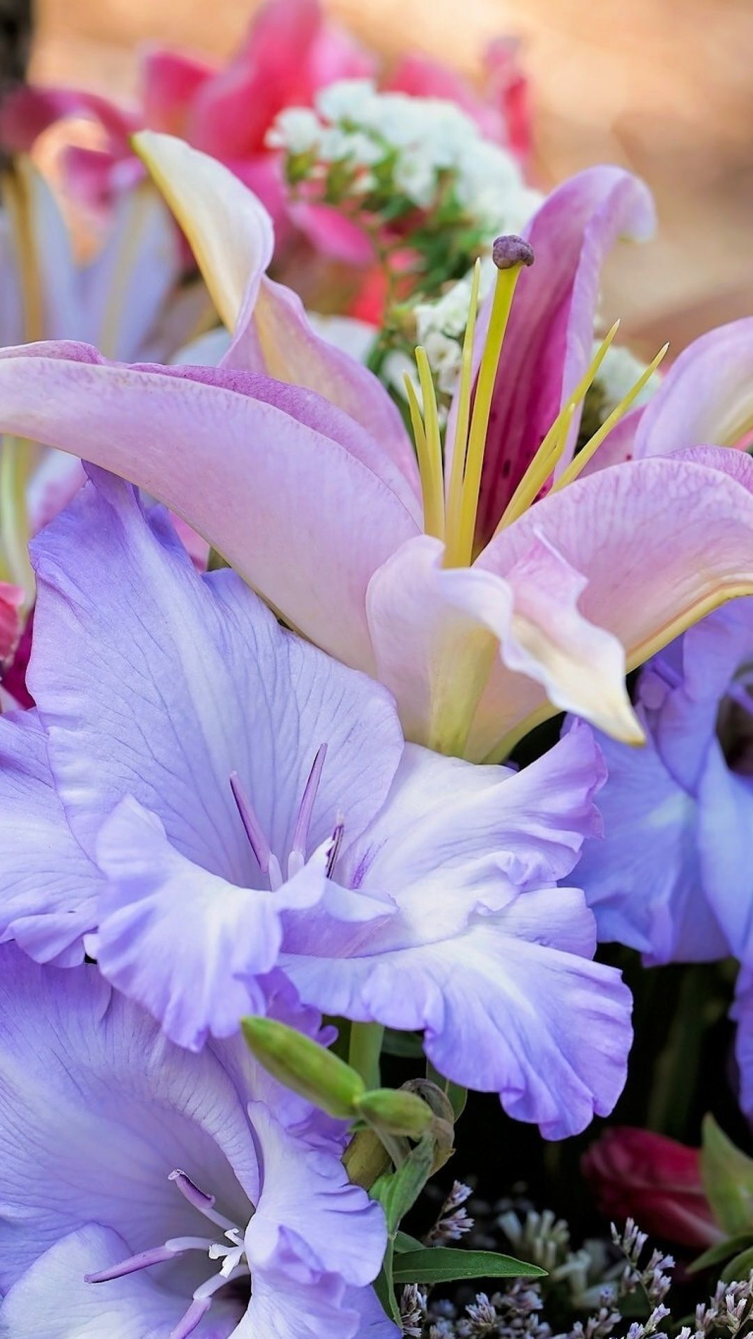 Lilies Flowers Wallpaper For