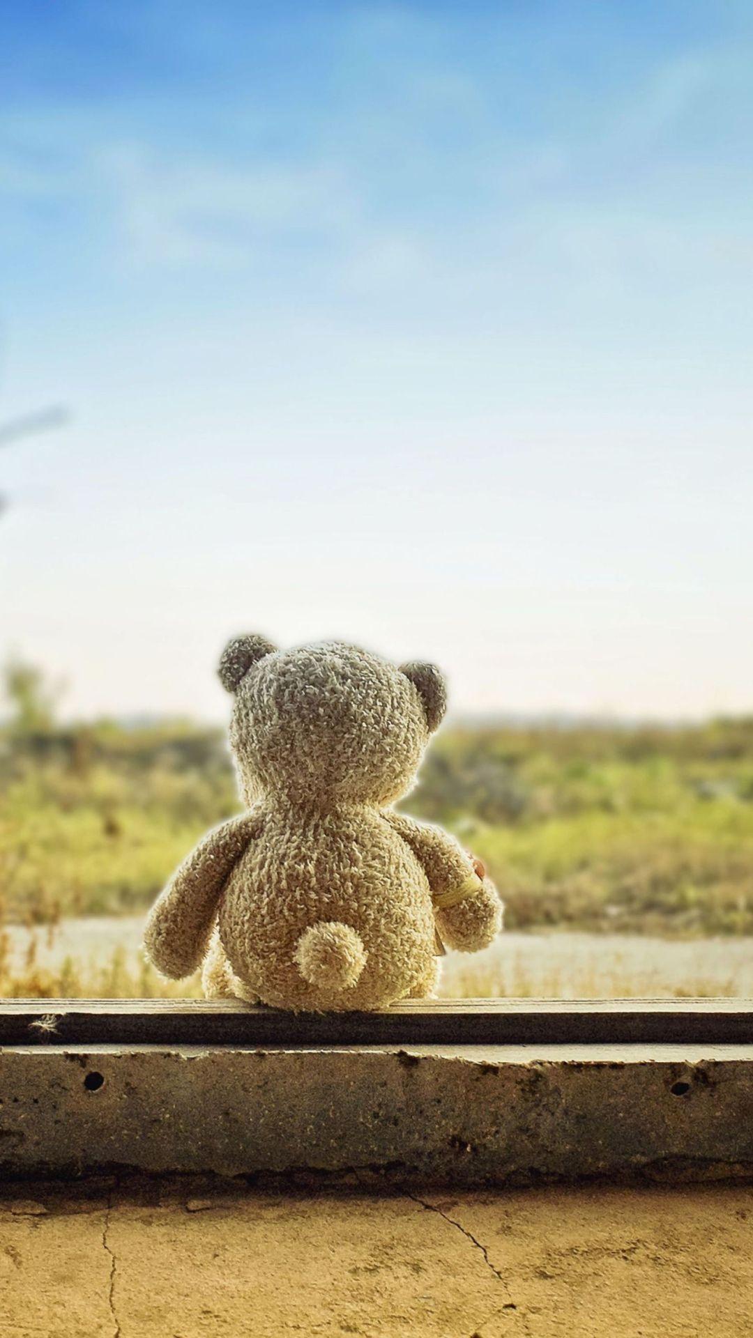 Lonely Teddy Bear Wallpaper For Nokia Lumia