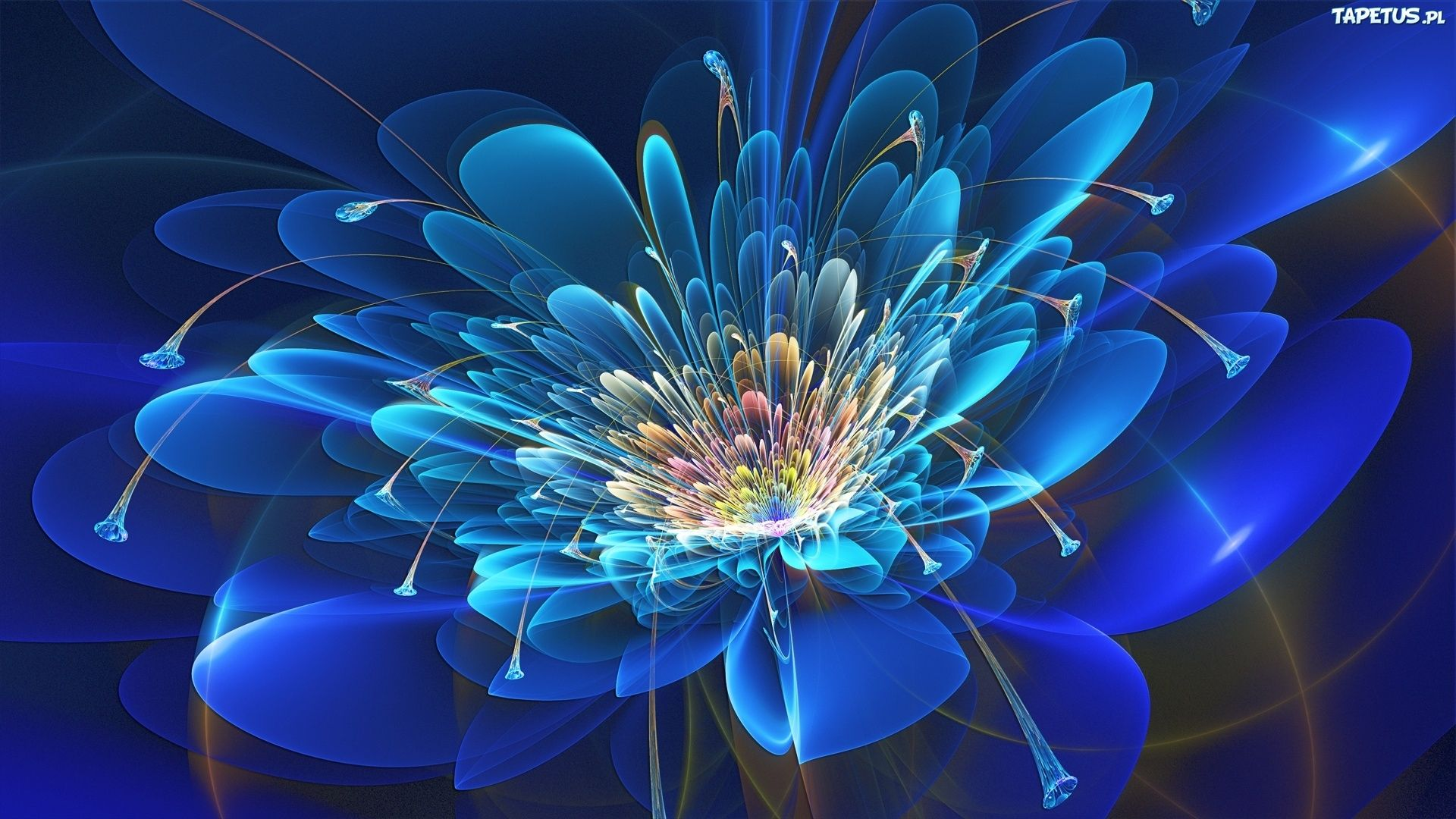 More Fabulous Flowers, Neon Flowers Live Wallpaper