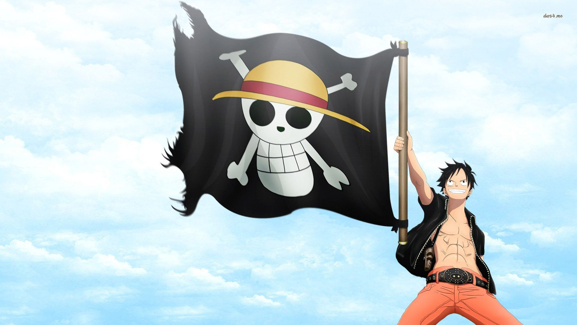 One Piece, One Part Art Flag