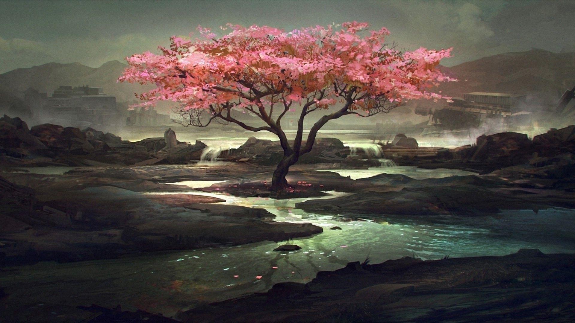 Sakura In Good Quality