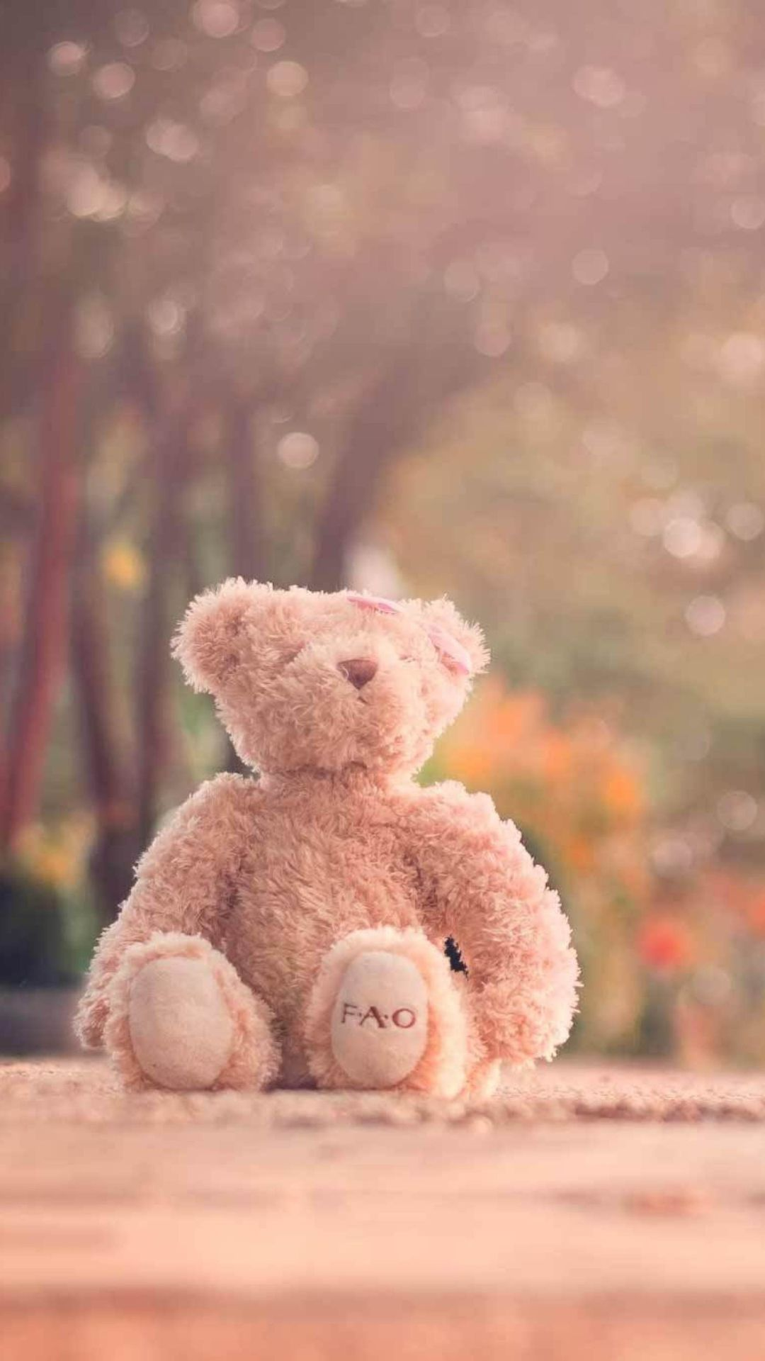 Teddy Bear Left Alone On Road Wallpaper For Iphone Plus