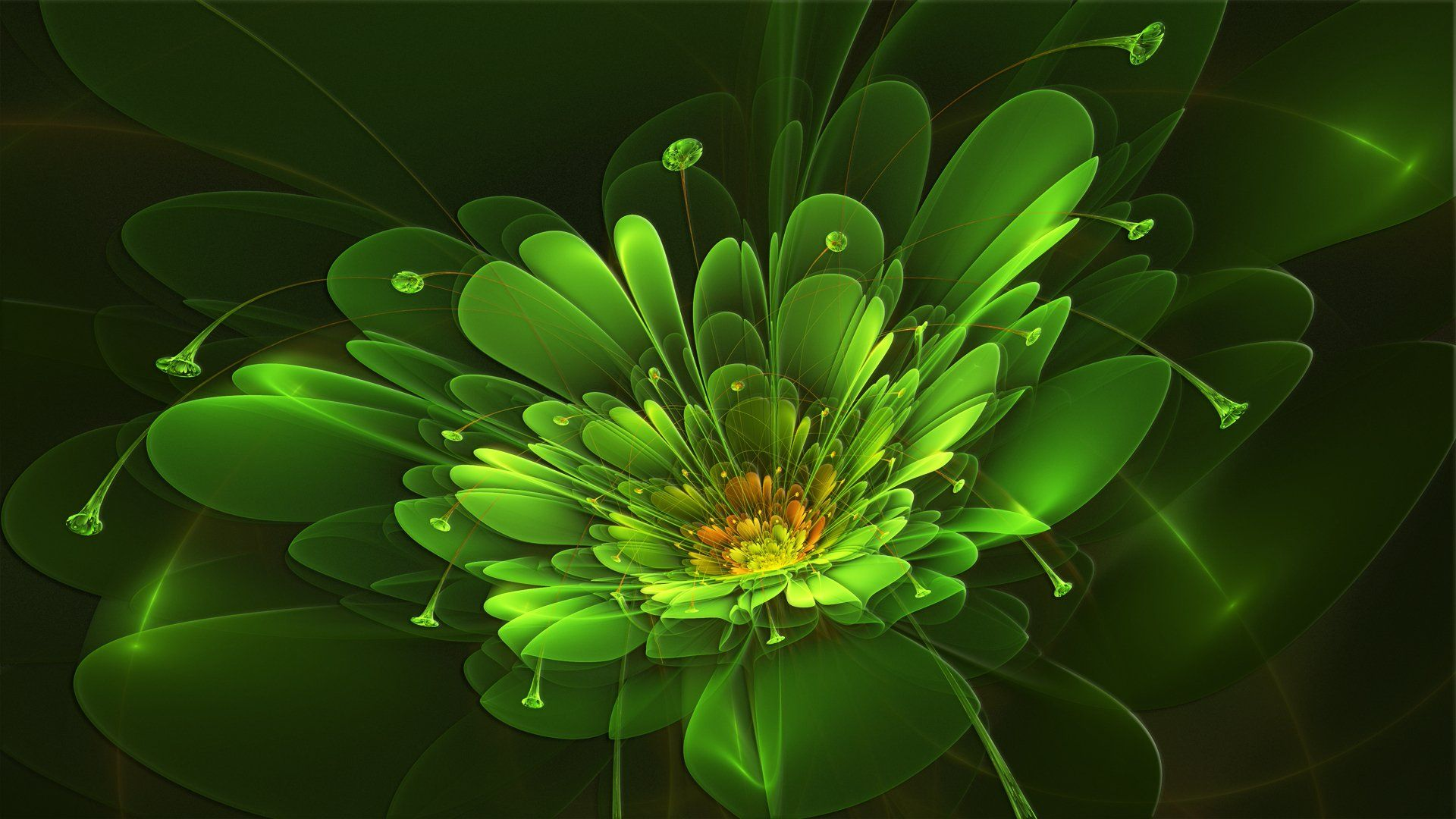 Wallpaper Abstract Flowers On A Green Background Fractals