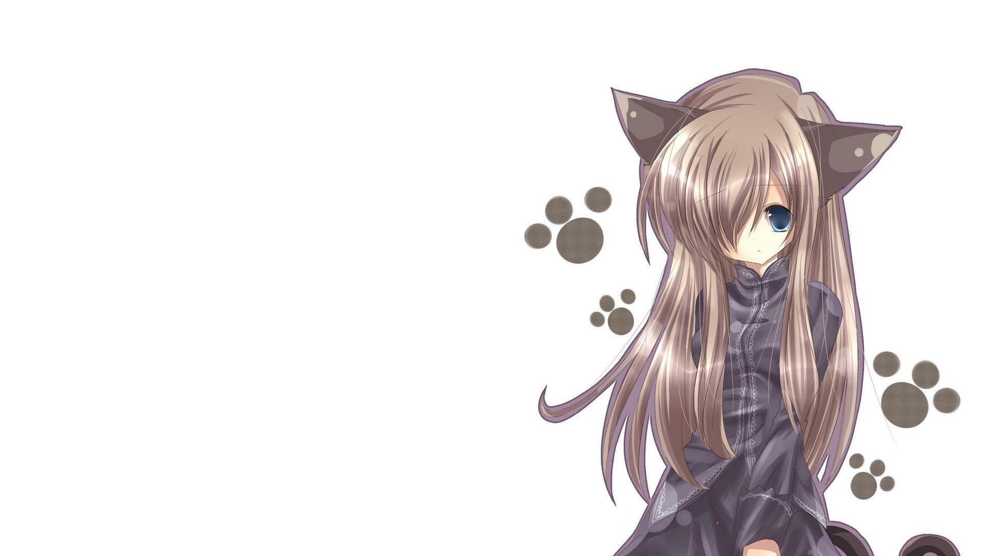 Cat Girl, Nekomimi, Art, Anime, Girl Wallpaper Full Hd, Hdtv, Fhd,