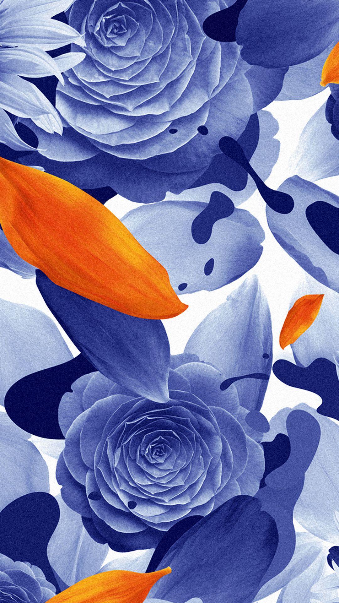Petal Flower Color Plant Background Close Orange Lily