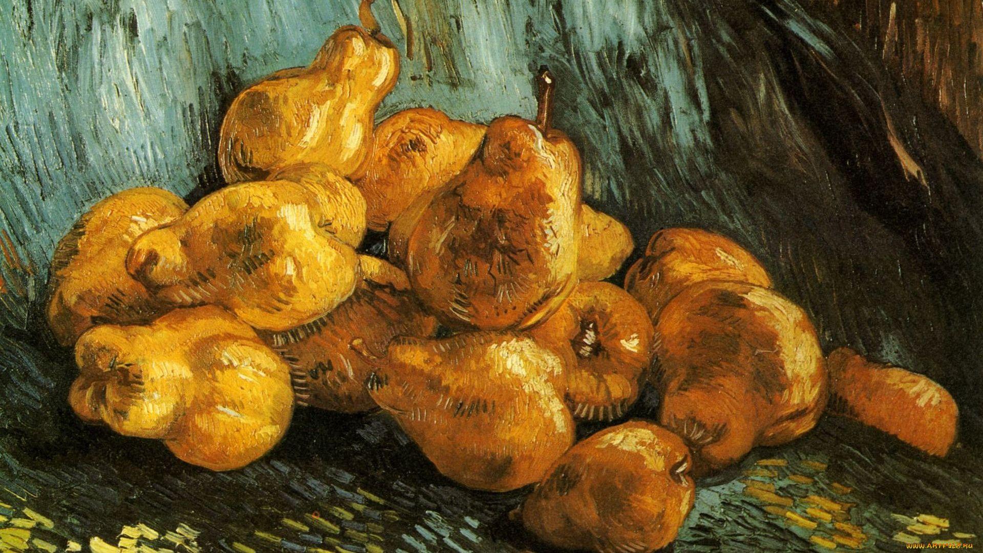 Vincent, Van, Gogh, Drawing