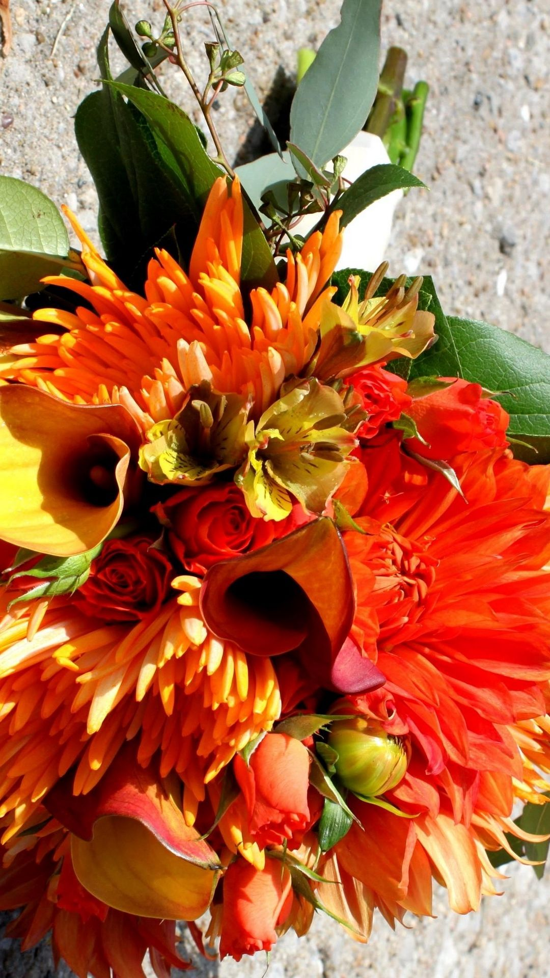 X Wallpaper Calla Lilies, Roses, Alstroemeria, Chrysanthemum, Color