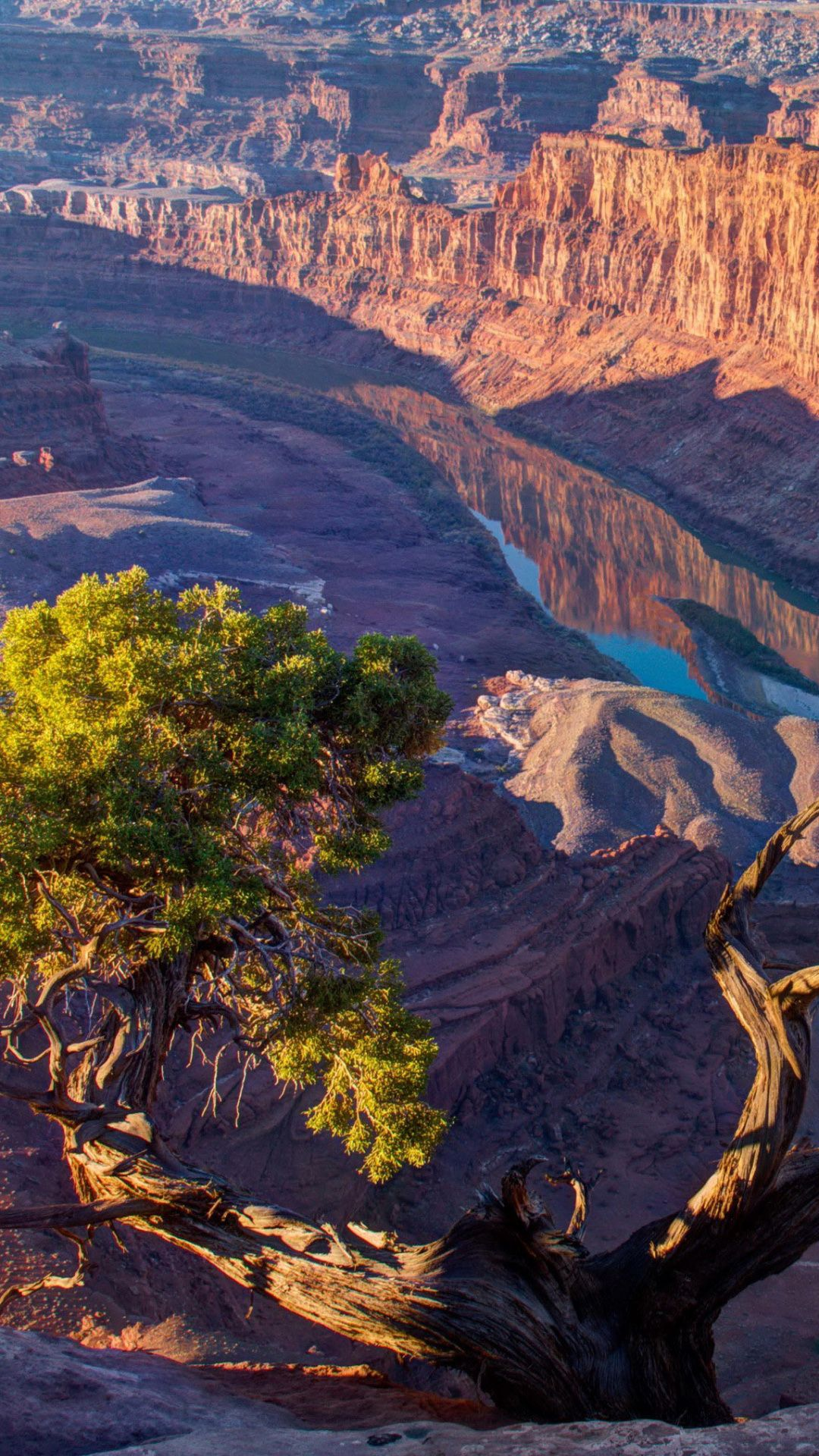 Zion National Park Formation Wilderness Desert Escarpment Geology