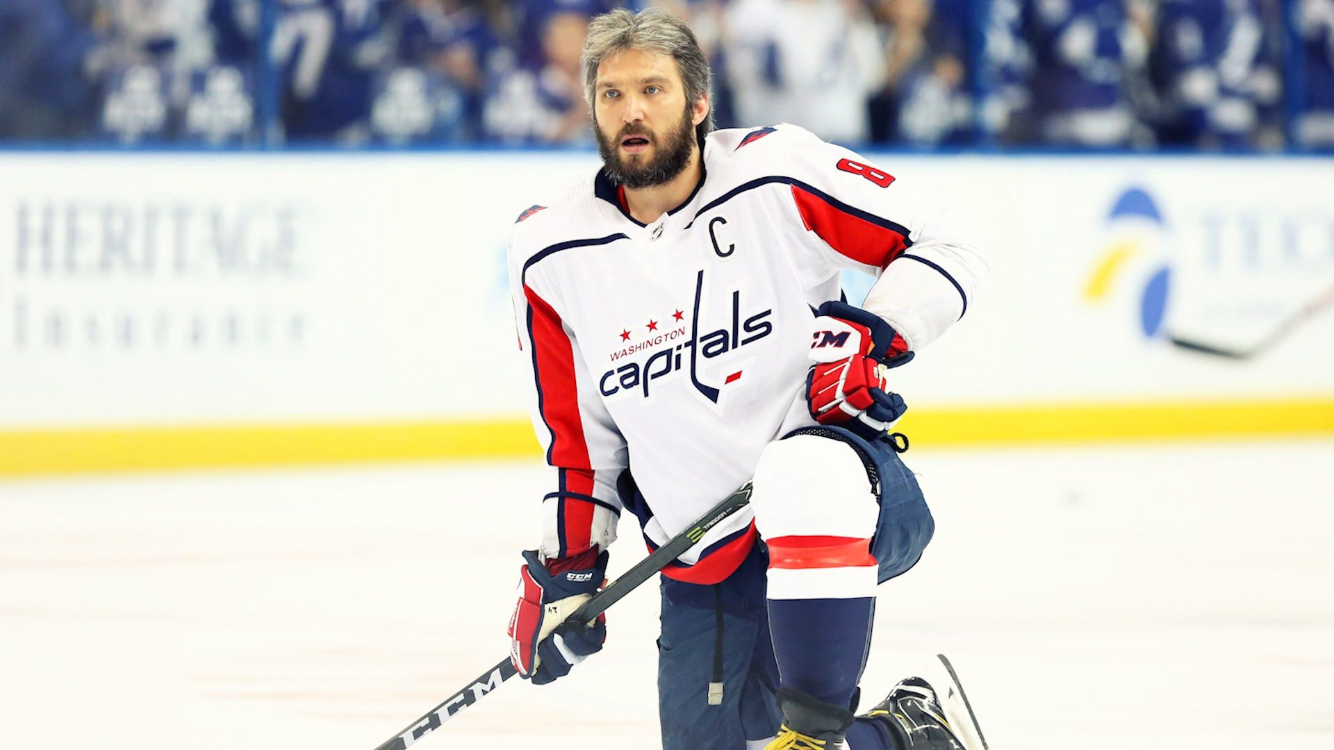 Alexander Ovechkin Photo