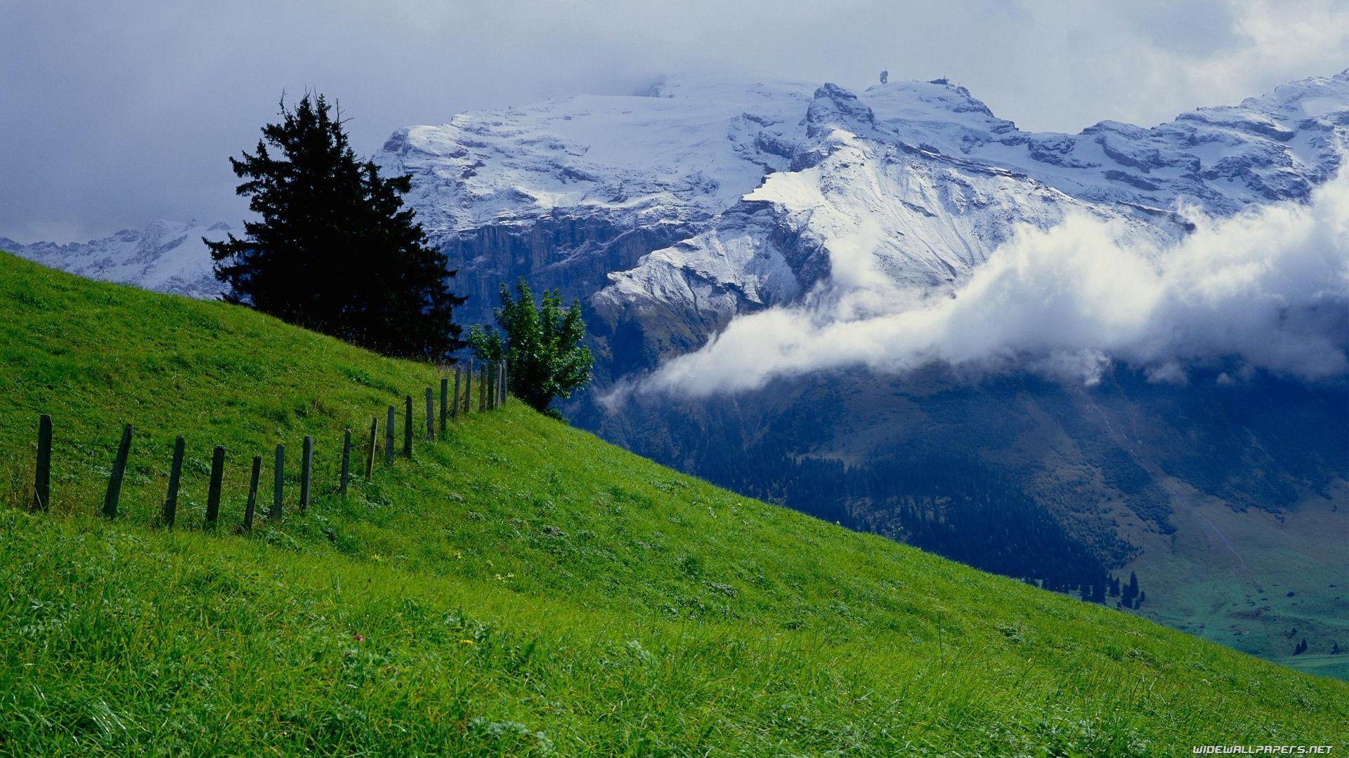 Alpine Mountain Photos