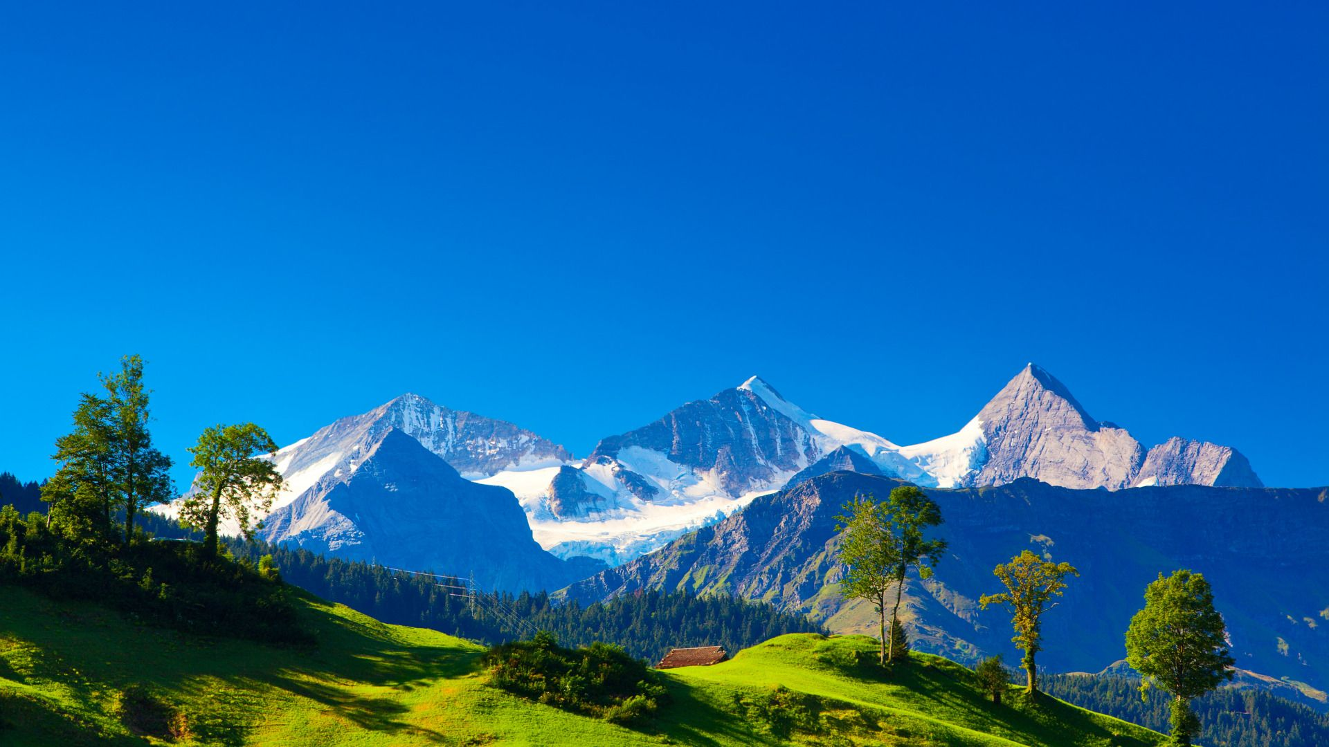 Alps Pictures