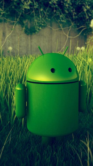 Android Photo Green Robot