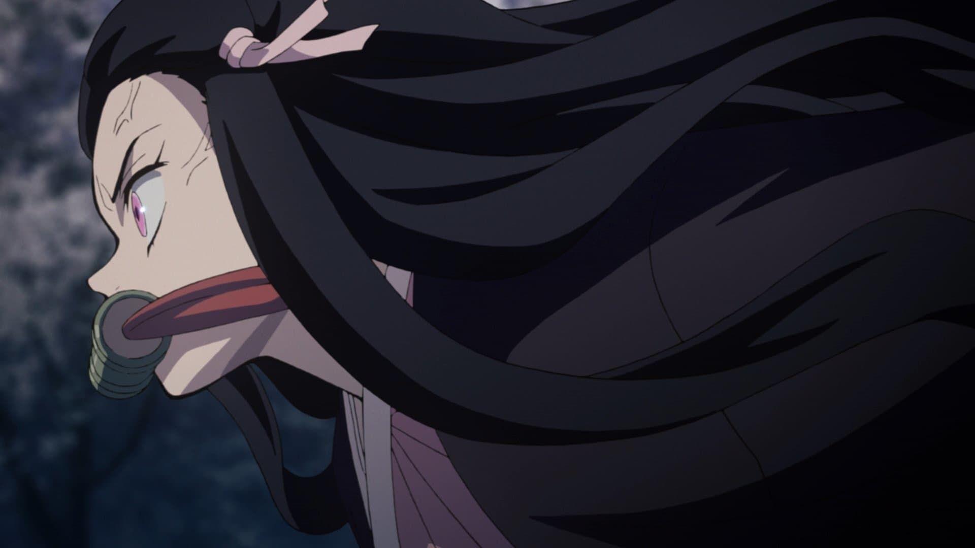 Demon Slayer Kimetsu No Yaiba Kimitsu