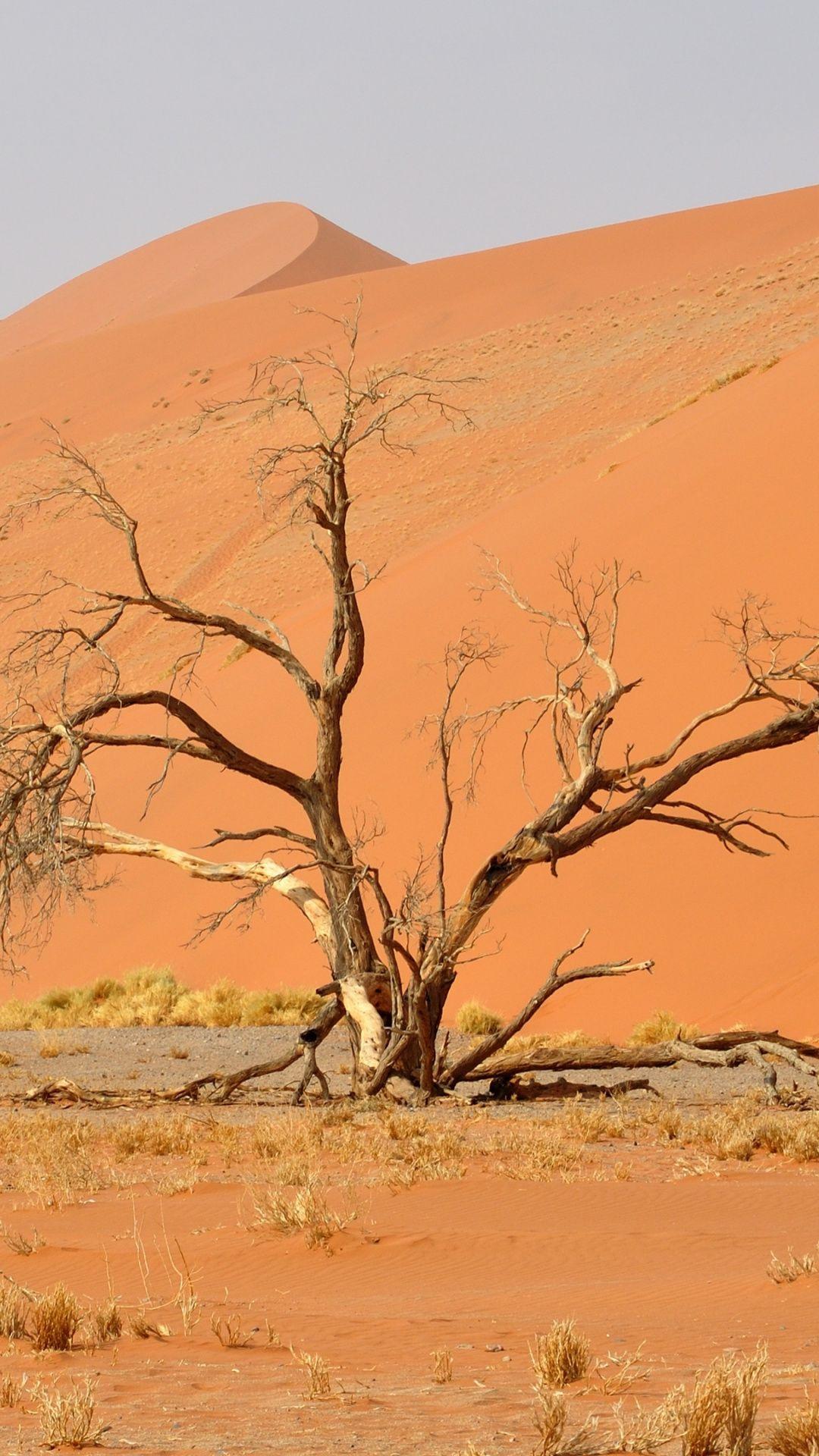 Namib Desert Africa Landscape