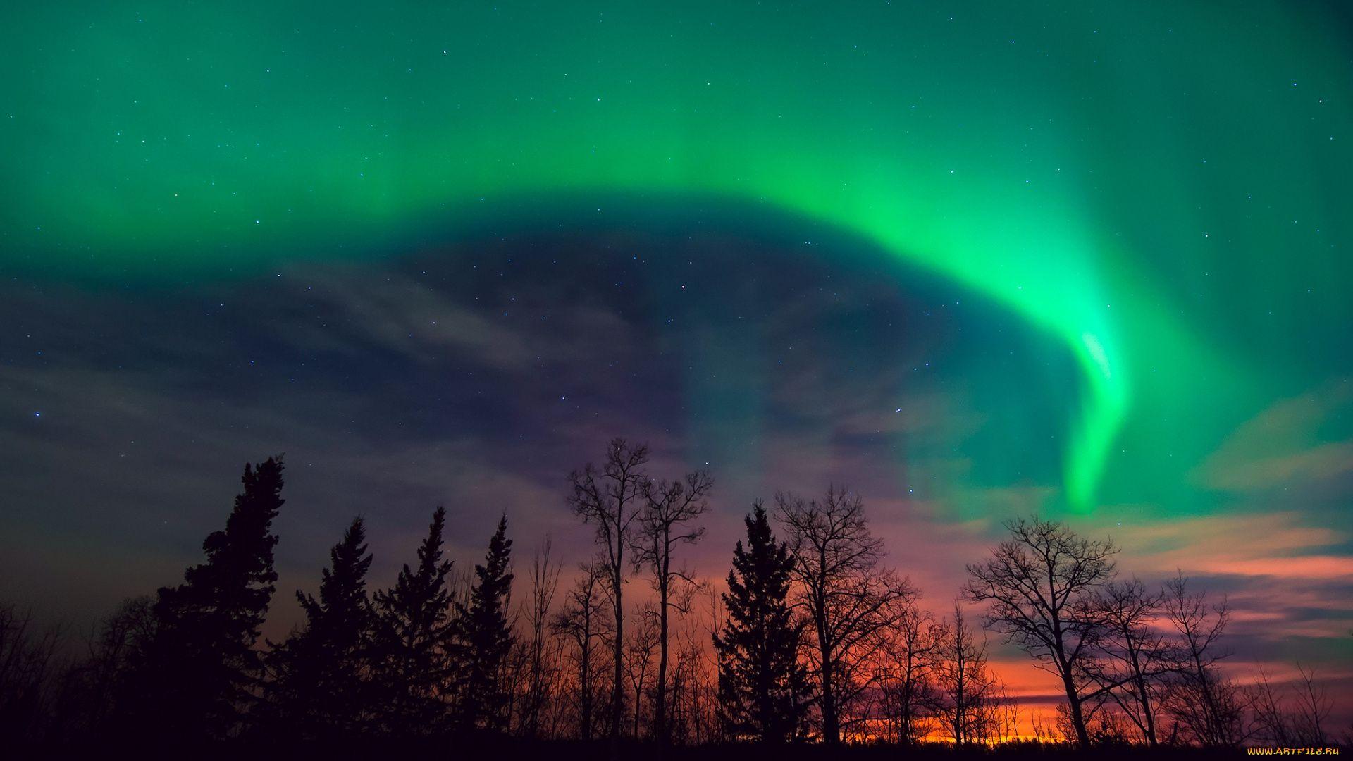 Northern Lights Winter Stars