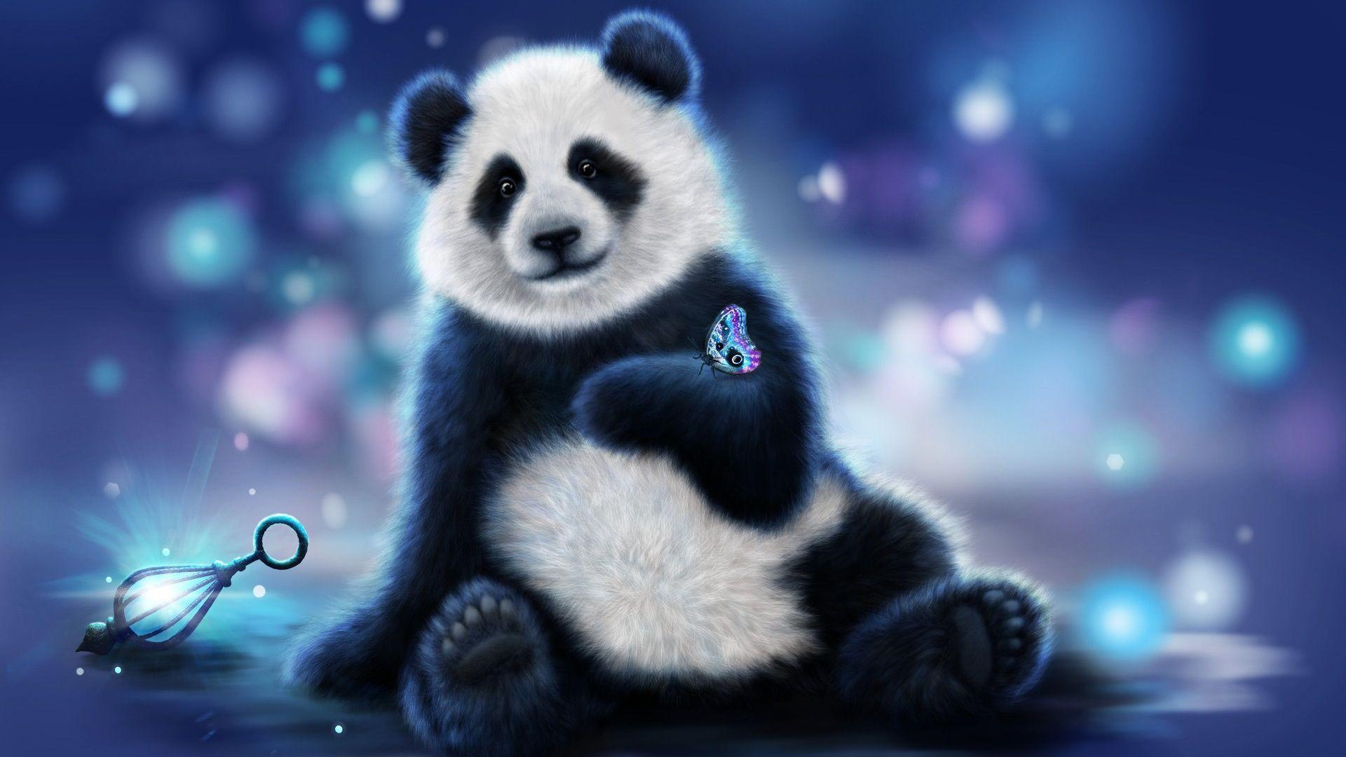 Panda Bear Pictures