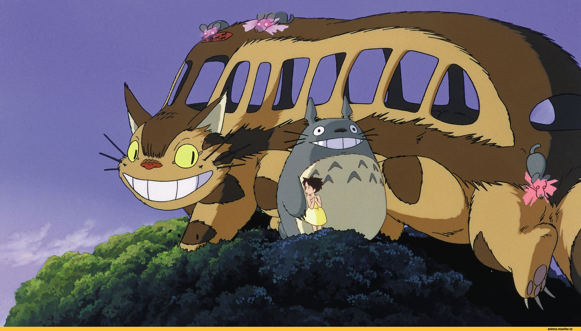 Totoro Cat Bus Pictures