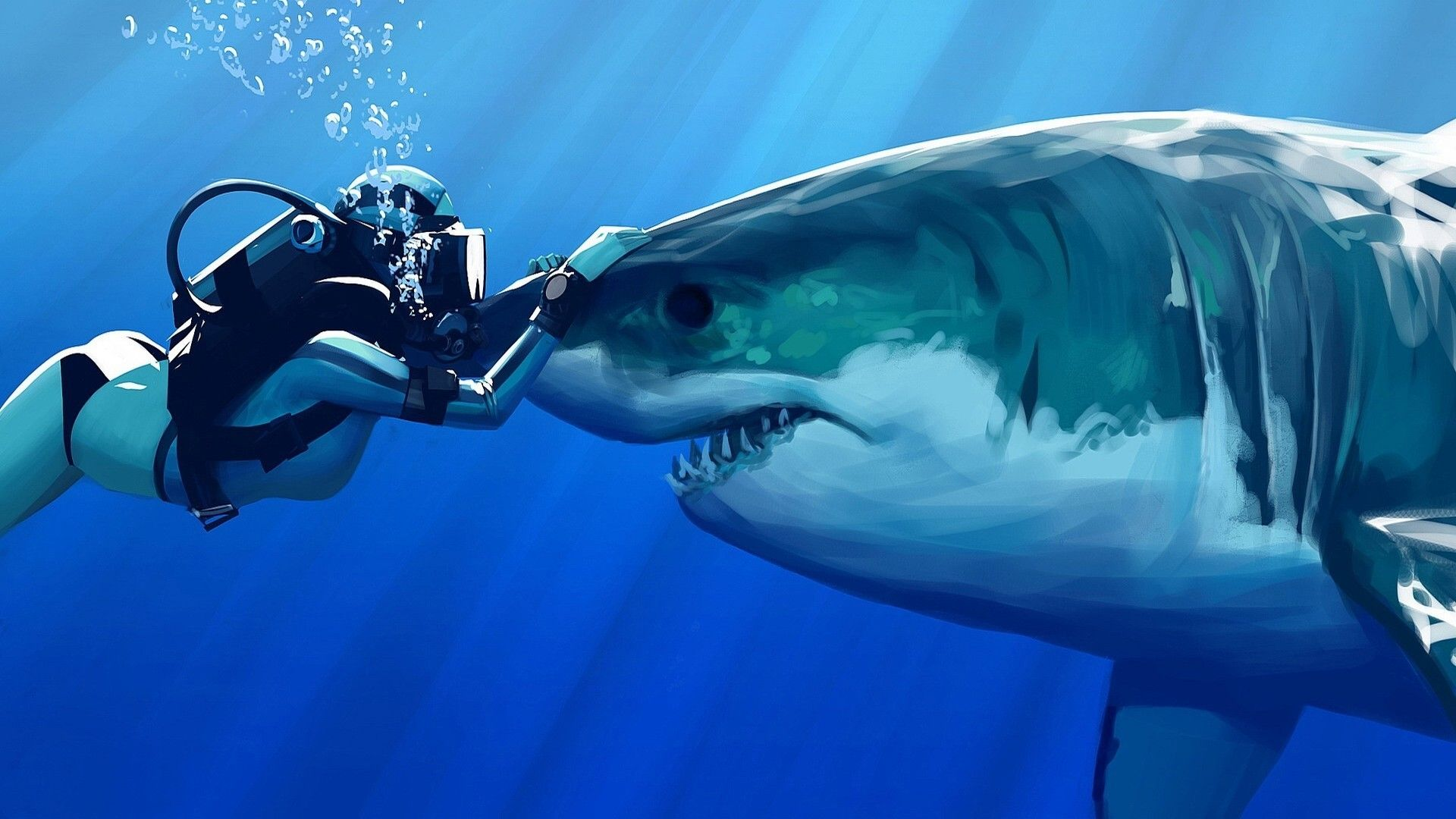 Wallpaper Shark And Diver