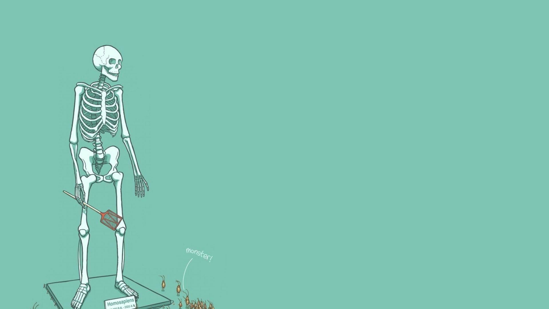 Wallpapers Minimalism Skeleton