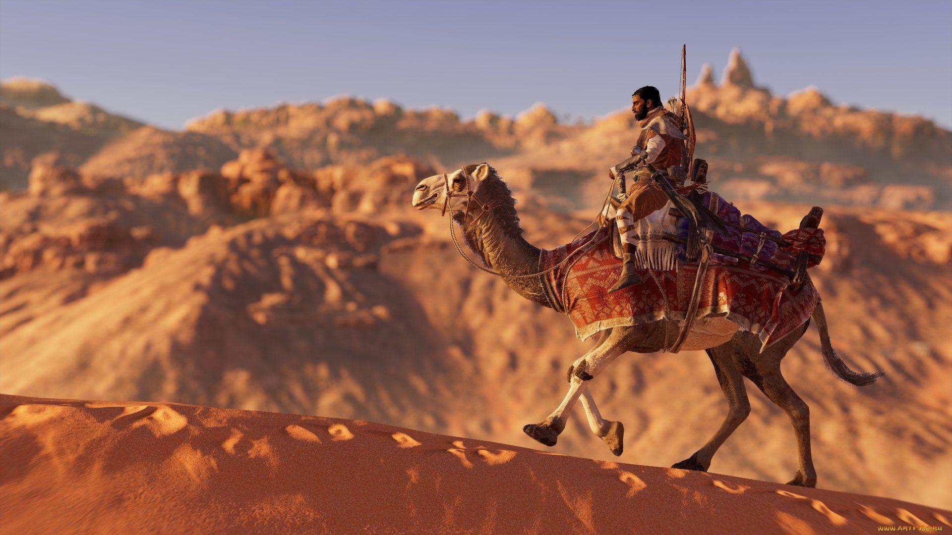 A Caravan Of Camels Wallpaper