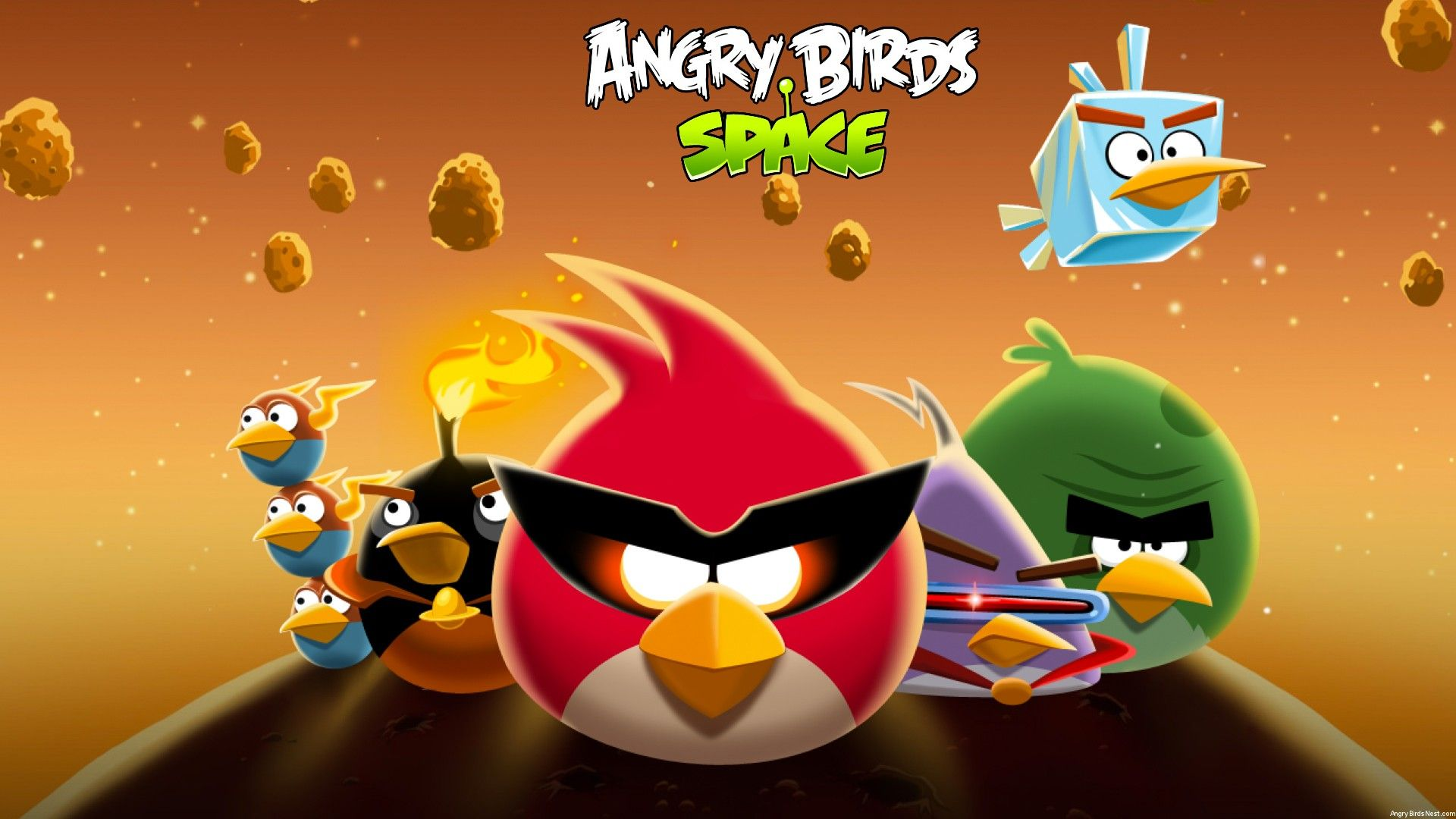 Angry Bers Pictures Game