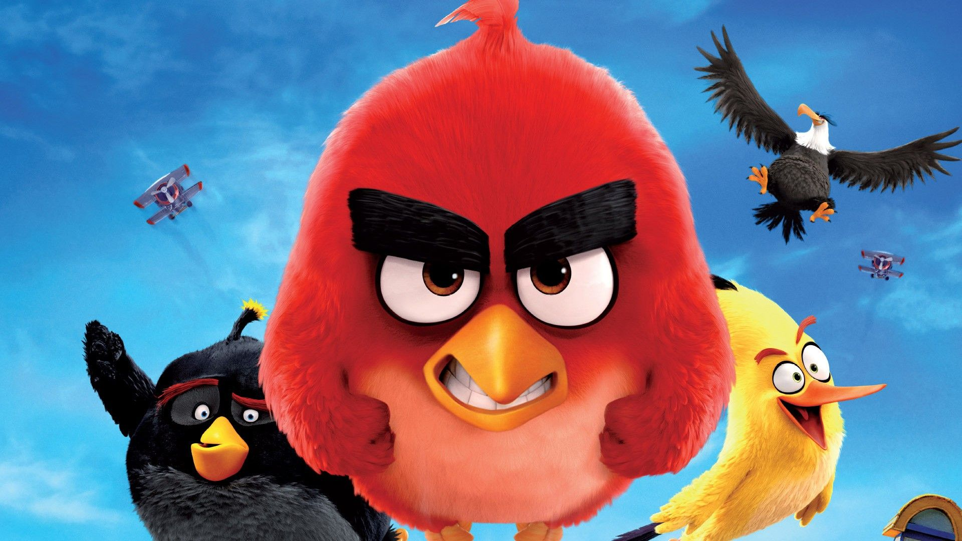 Angry Birds Cartoon 2016