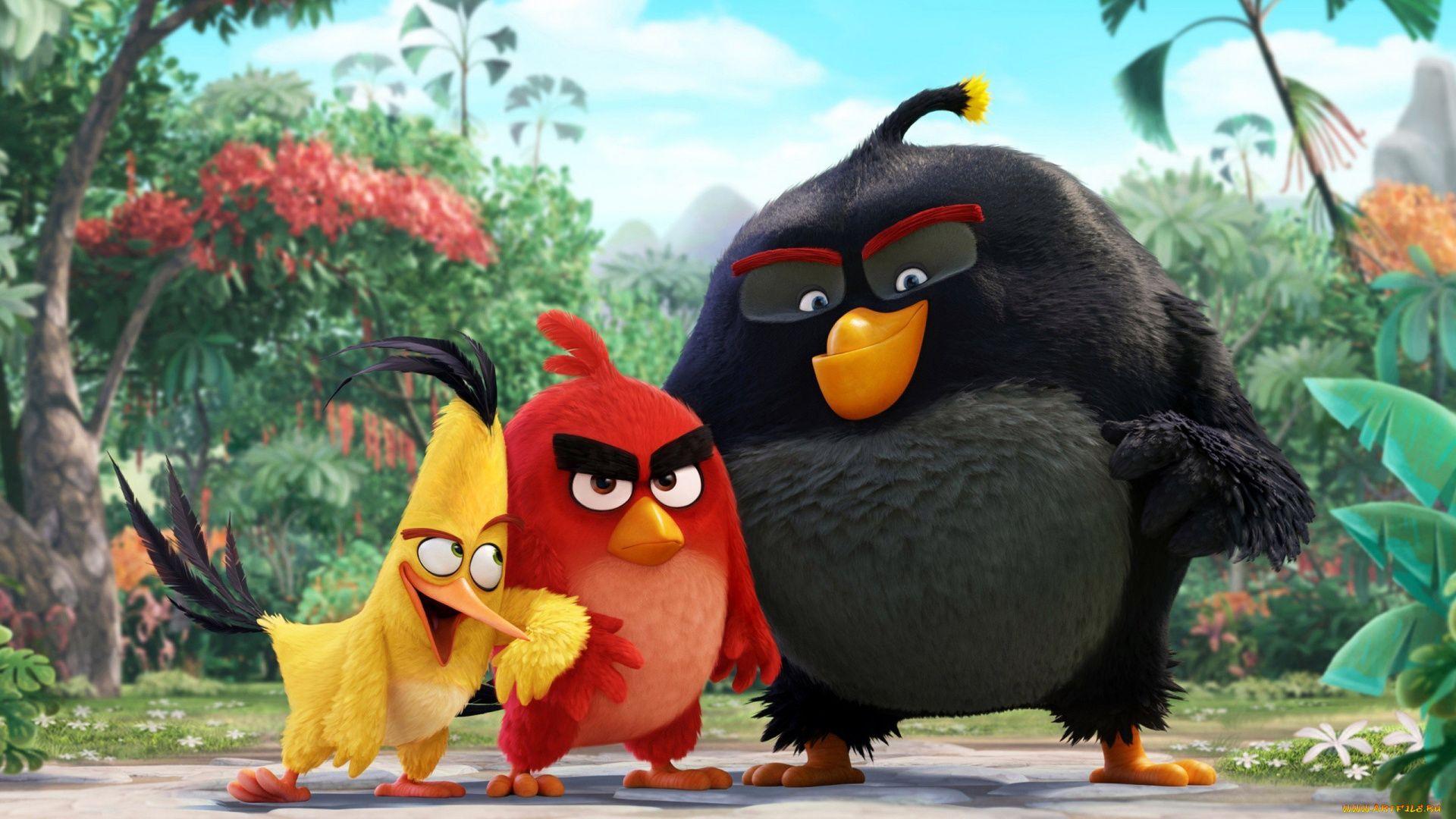 Angry Birds Movie Cartoon 2016