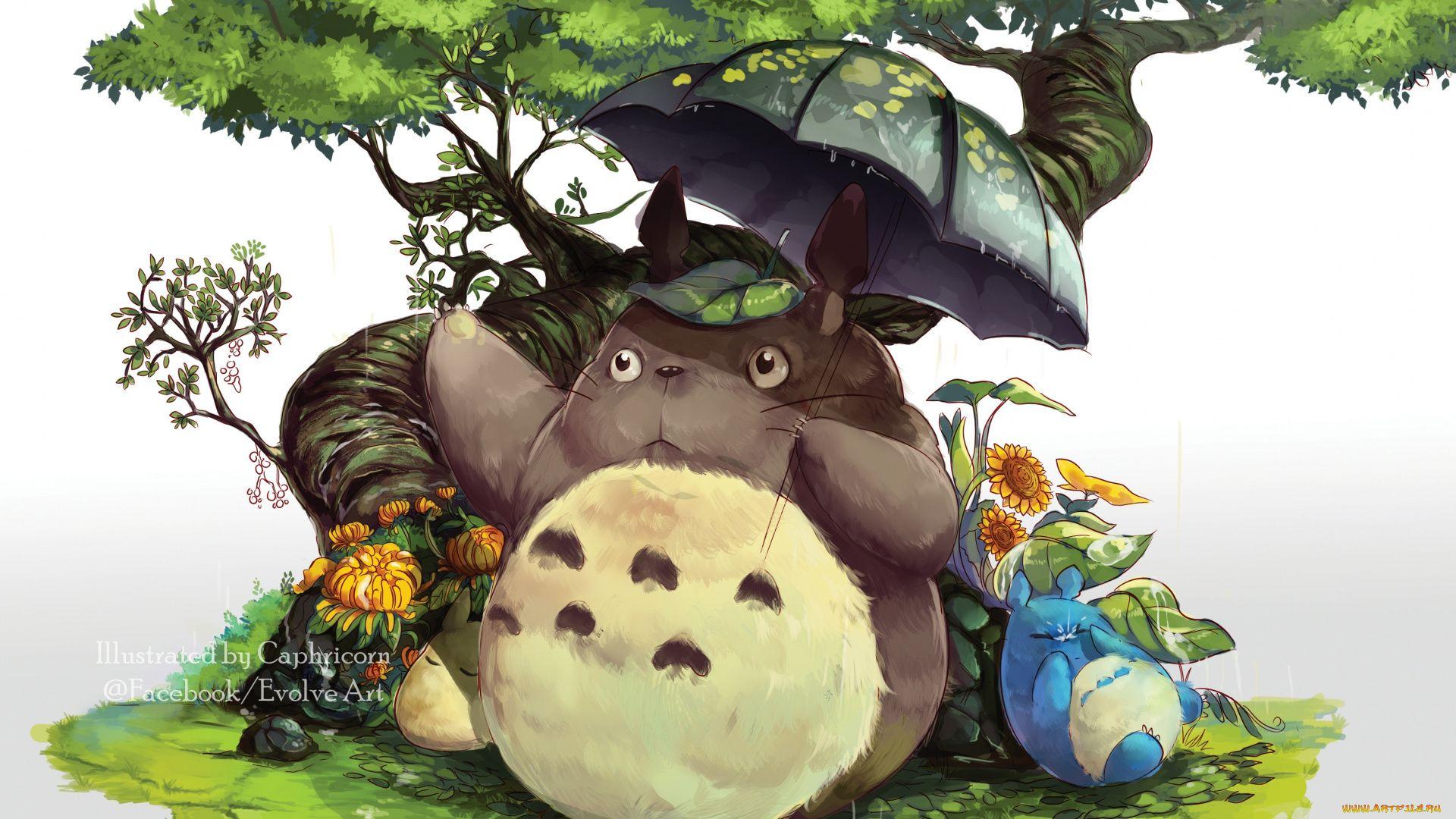 Anime Totoro