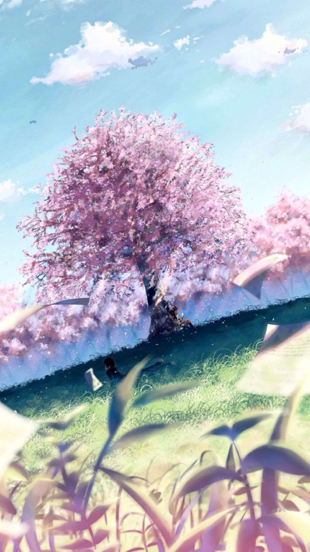 Anime Spring Sakura