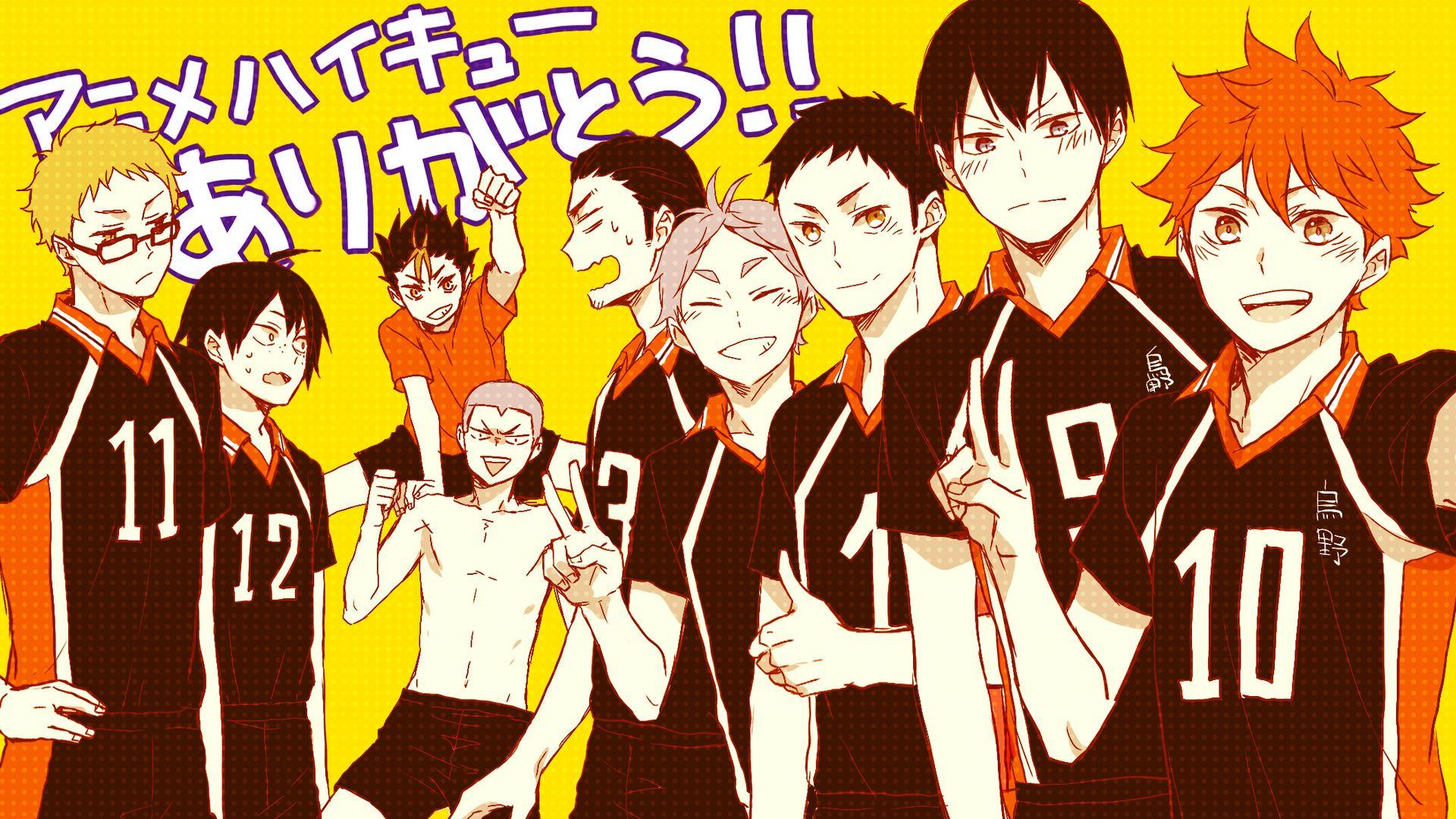 Anime Volleyball Haikyuu!! Karasuno