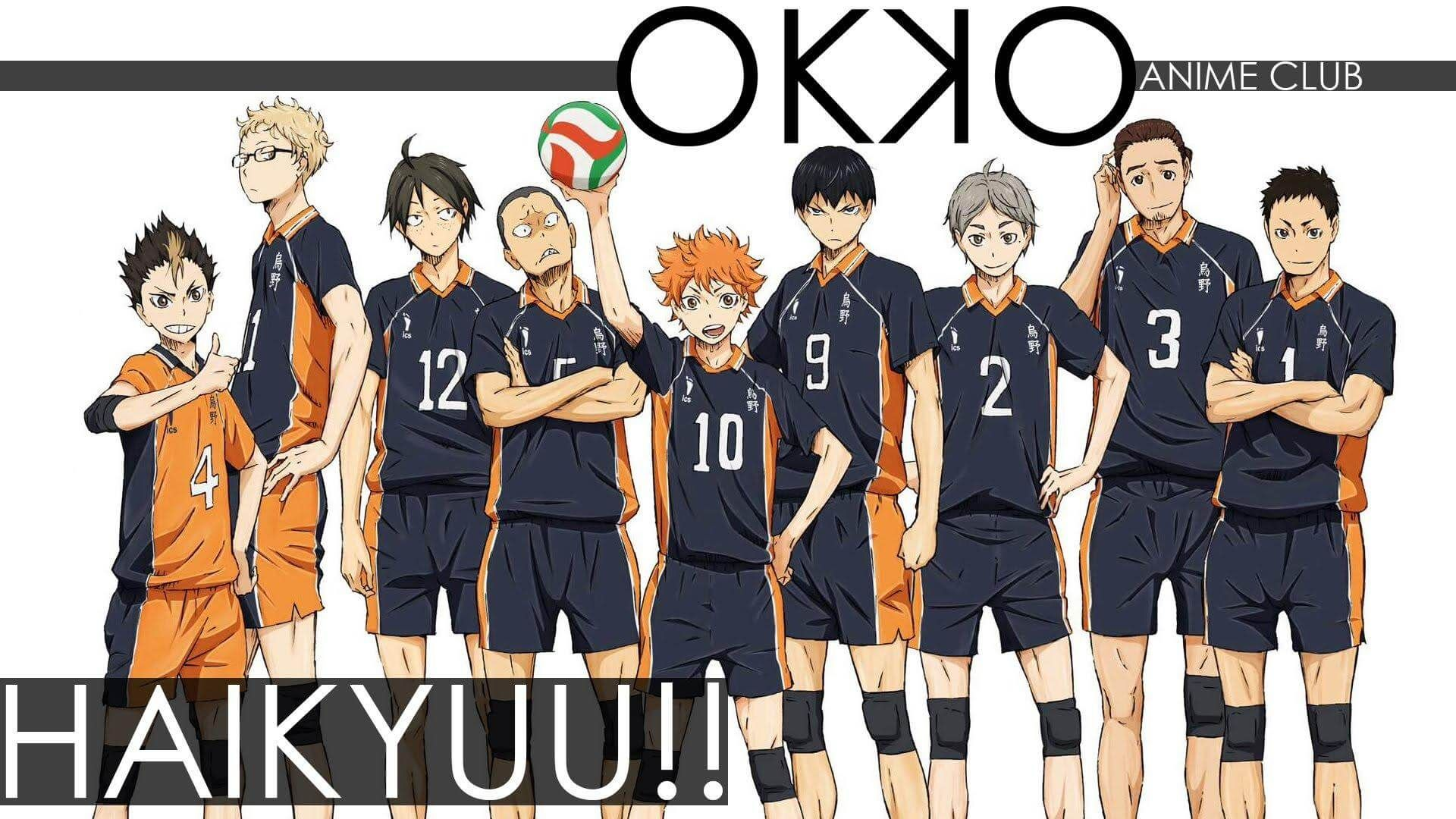 Anime Volleyball Haikyuu!! The Whole Team
