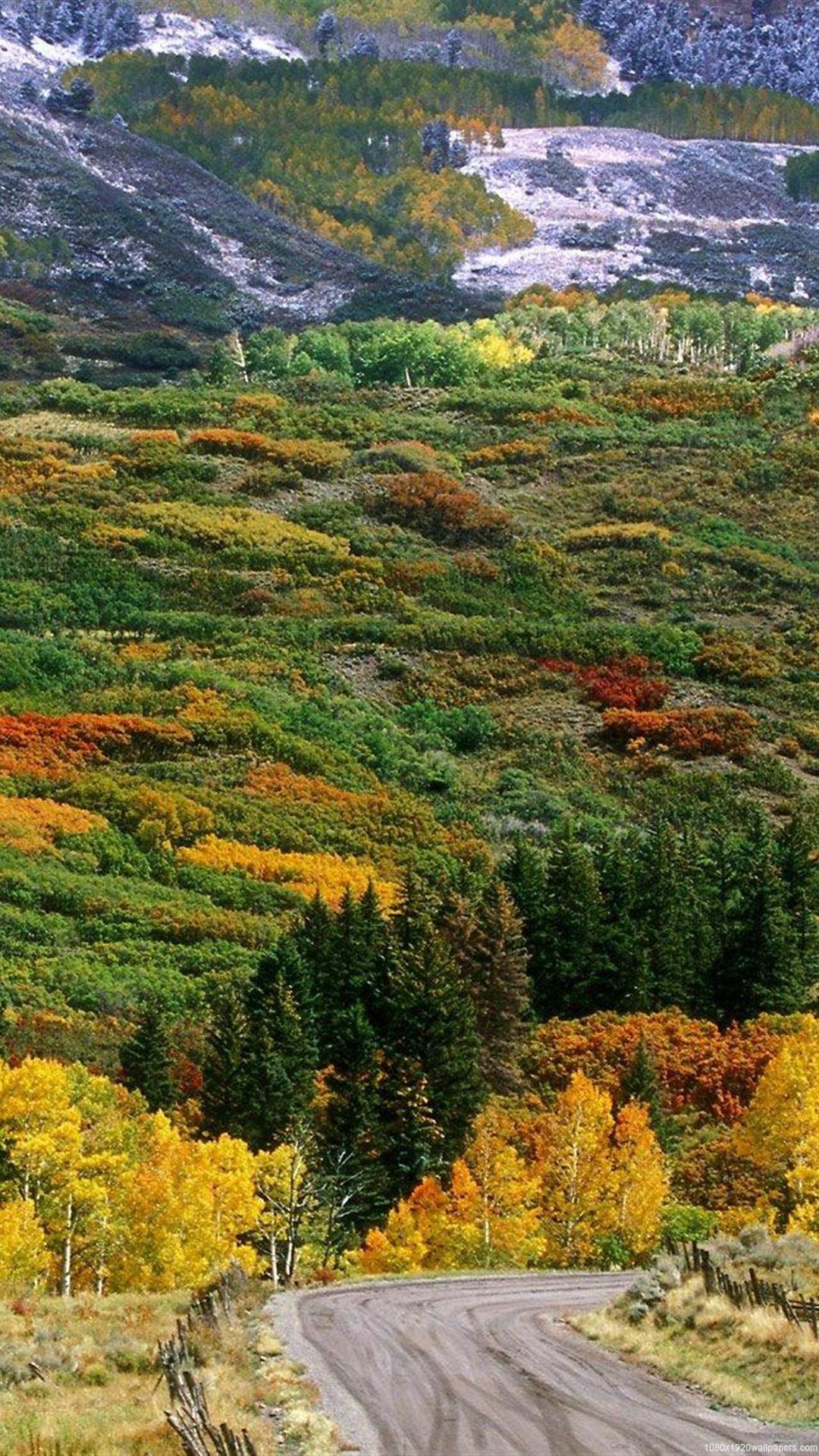 Autumn In Colorado Photos