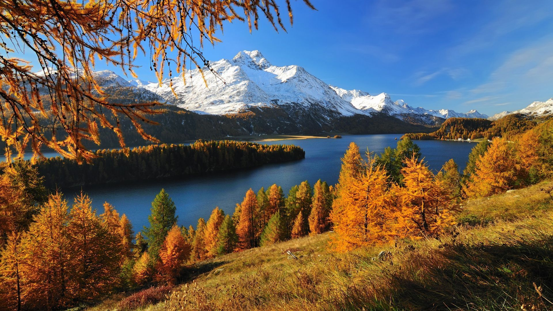 Autumn In The Swiss Mountains