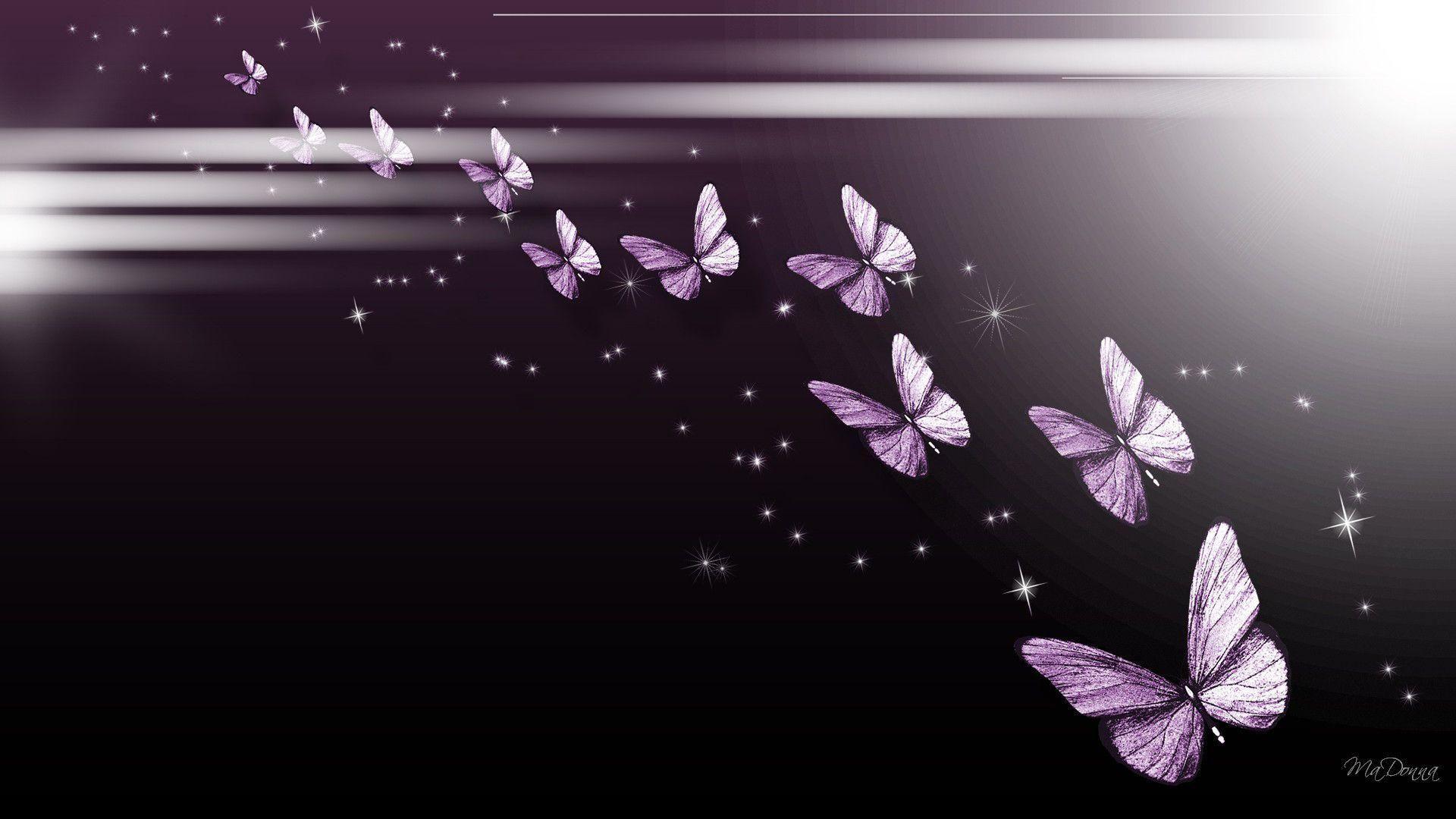 Background For Desktop, Butterflies