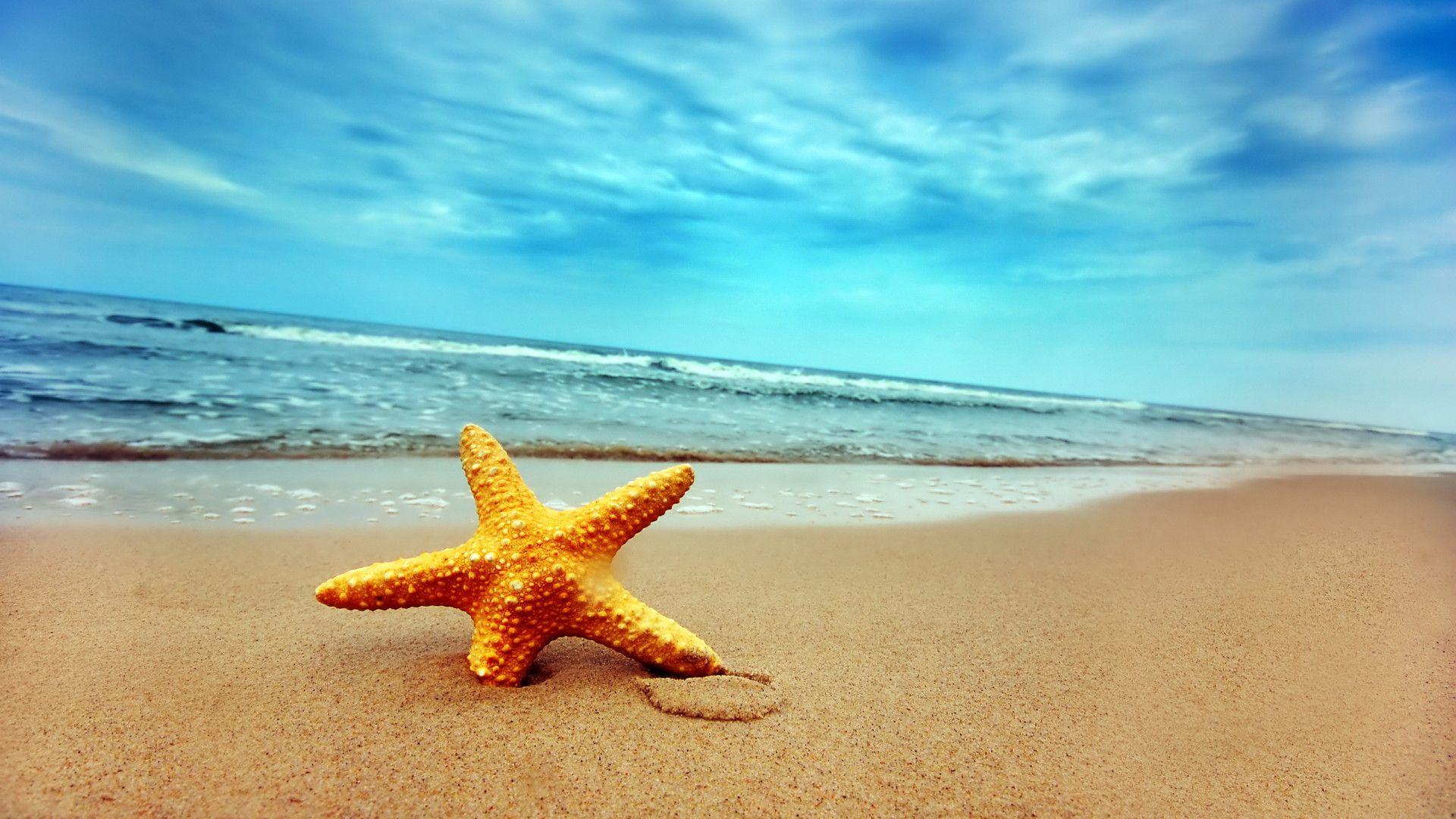 Background Sea Beach