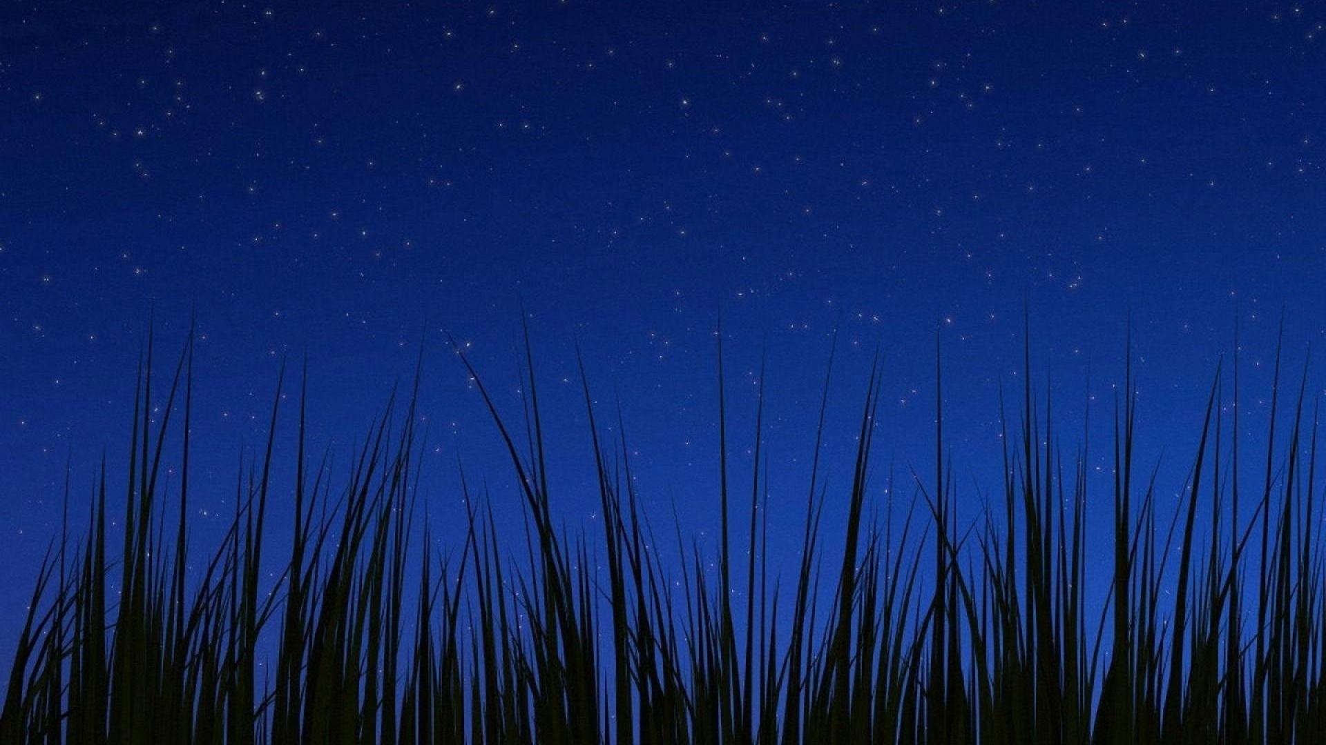 Background Sky Night Grass