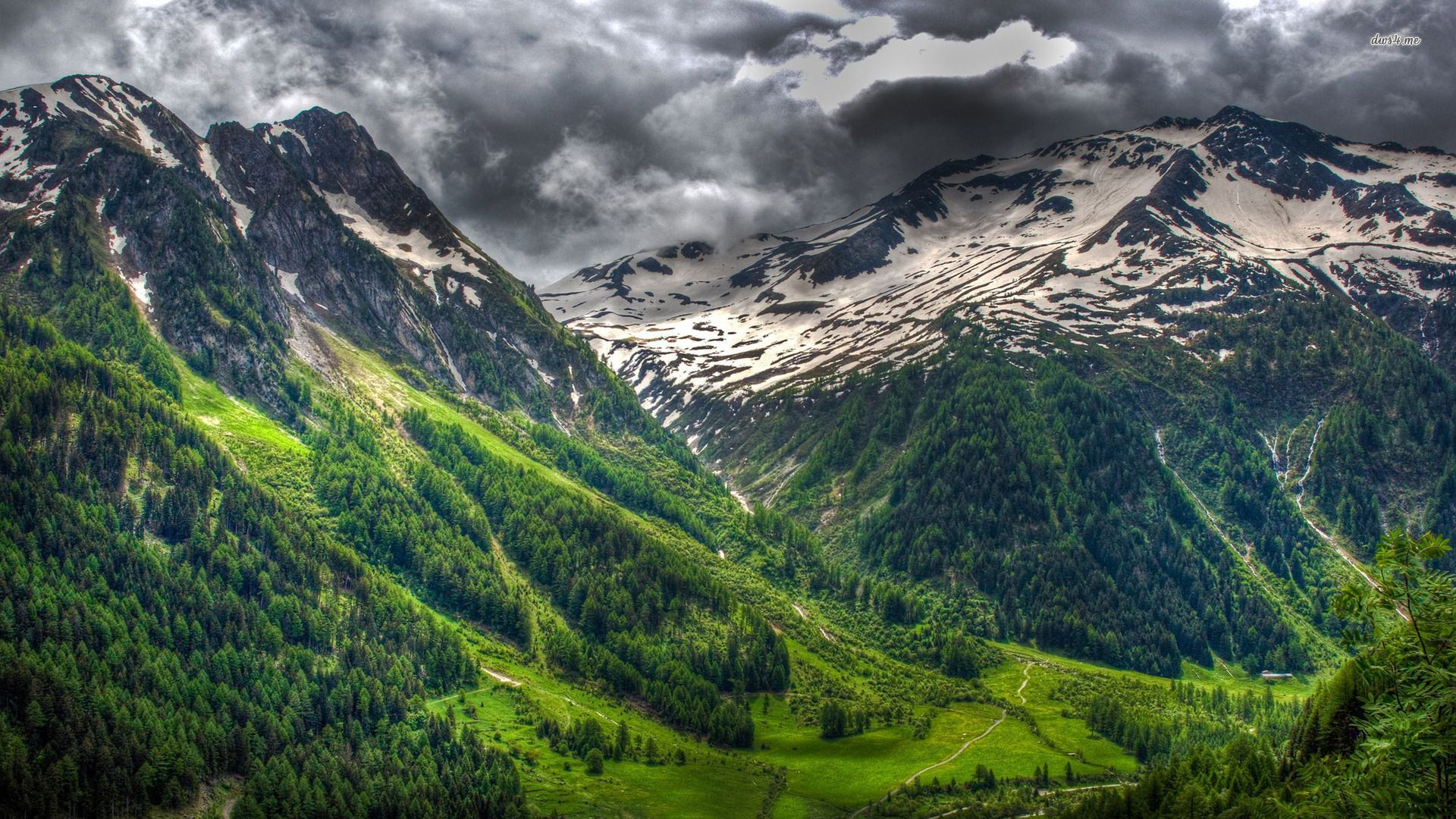 Background The Alps