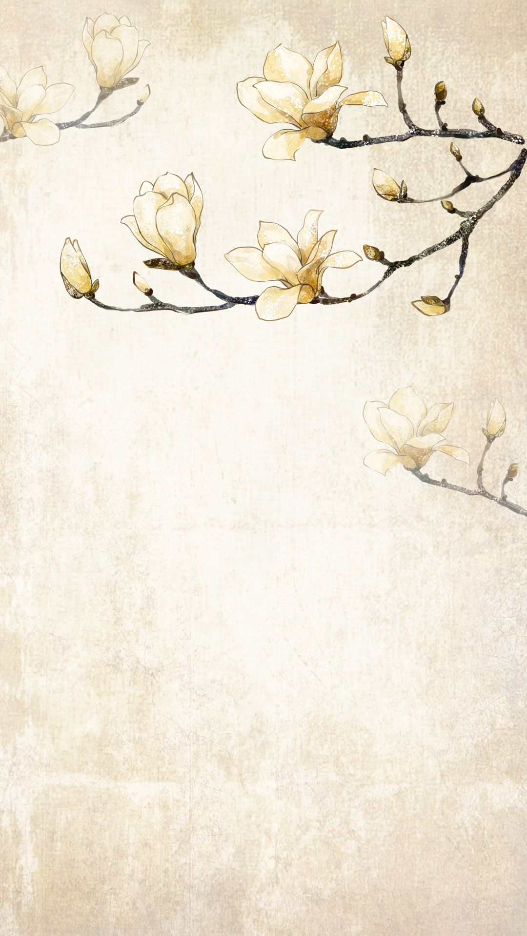 Blooming Magnolia Vector Png