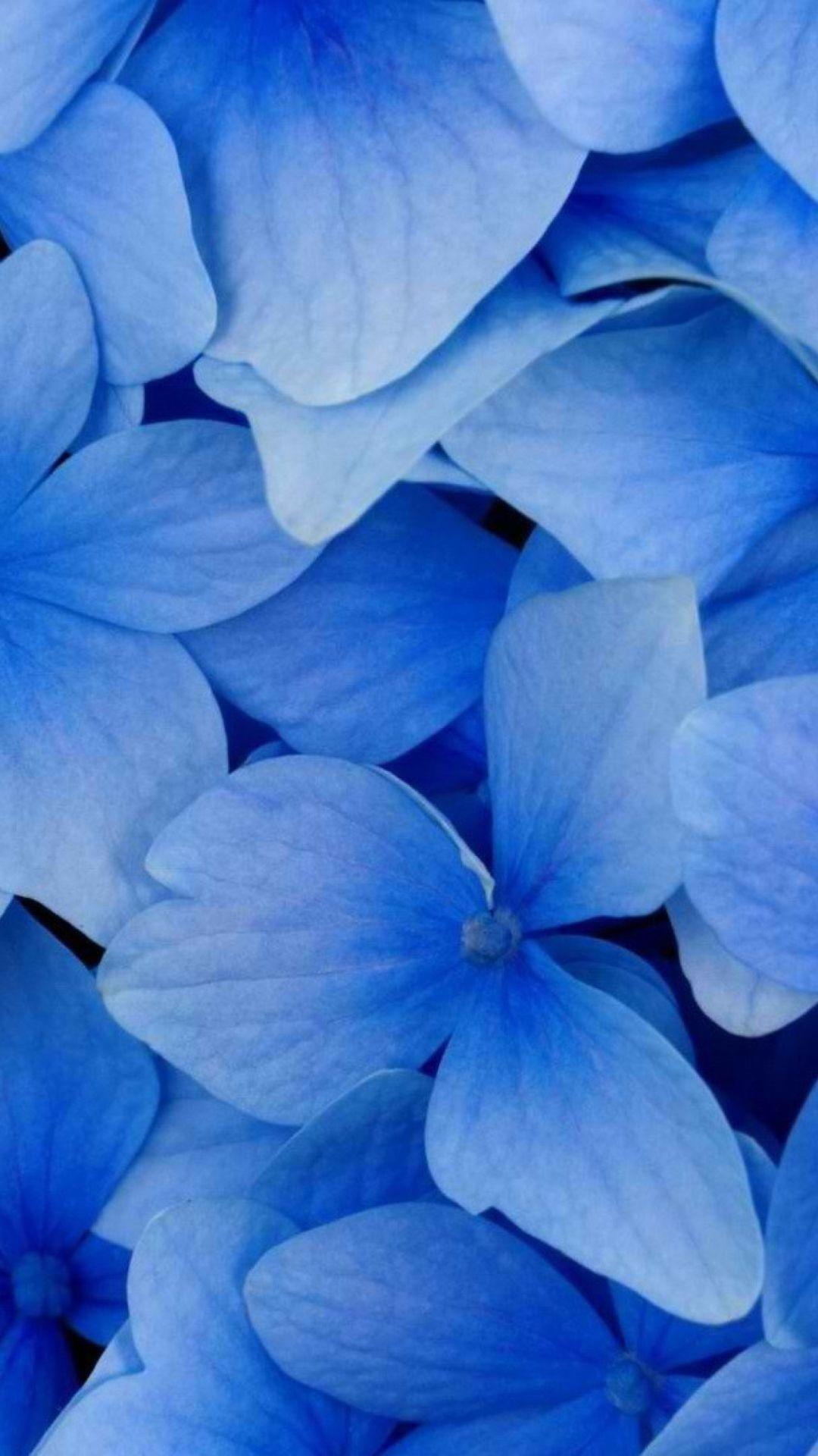 Blue Flowers Vertically