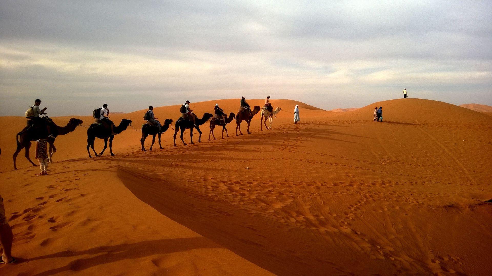 Caravan In The Desert Picture