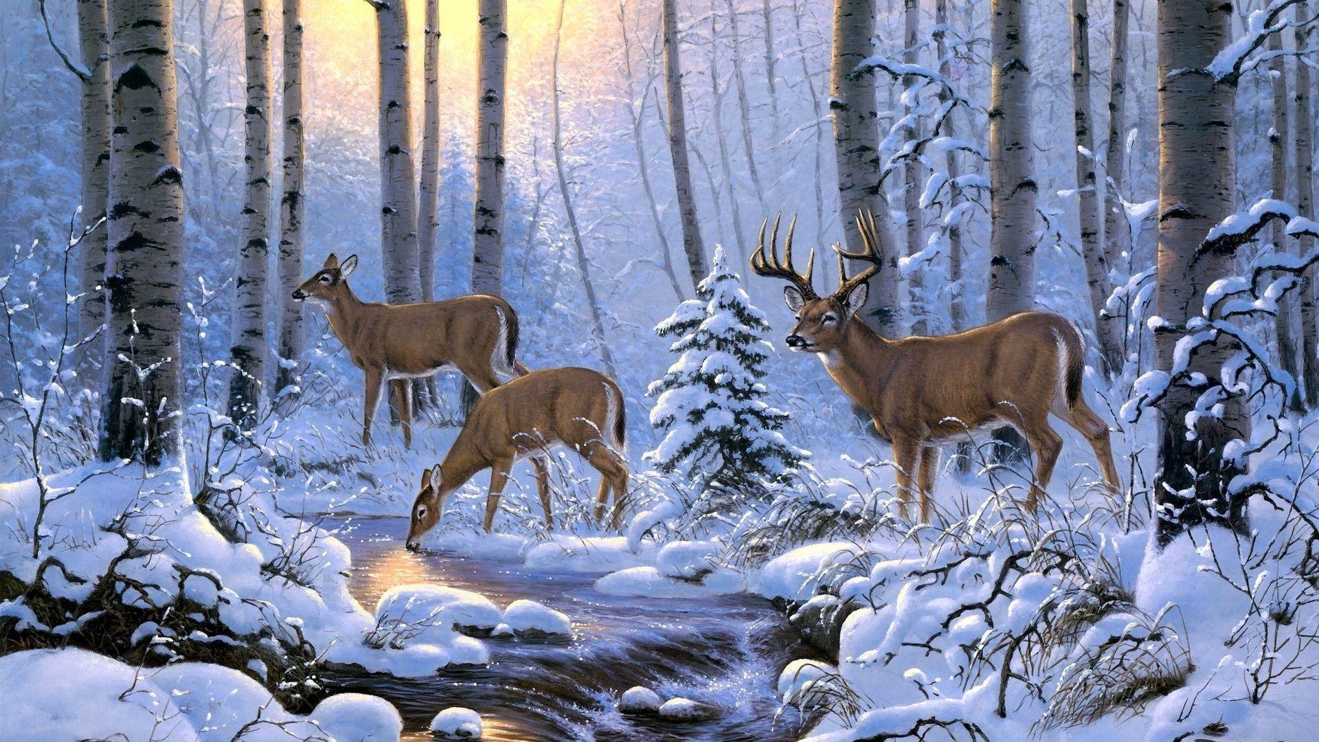 Deer In Winter Forest 2